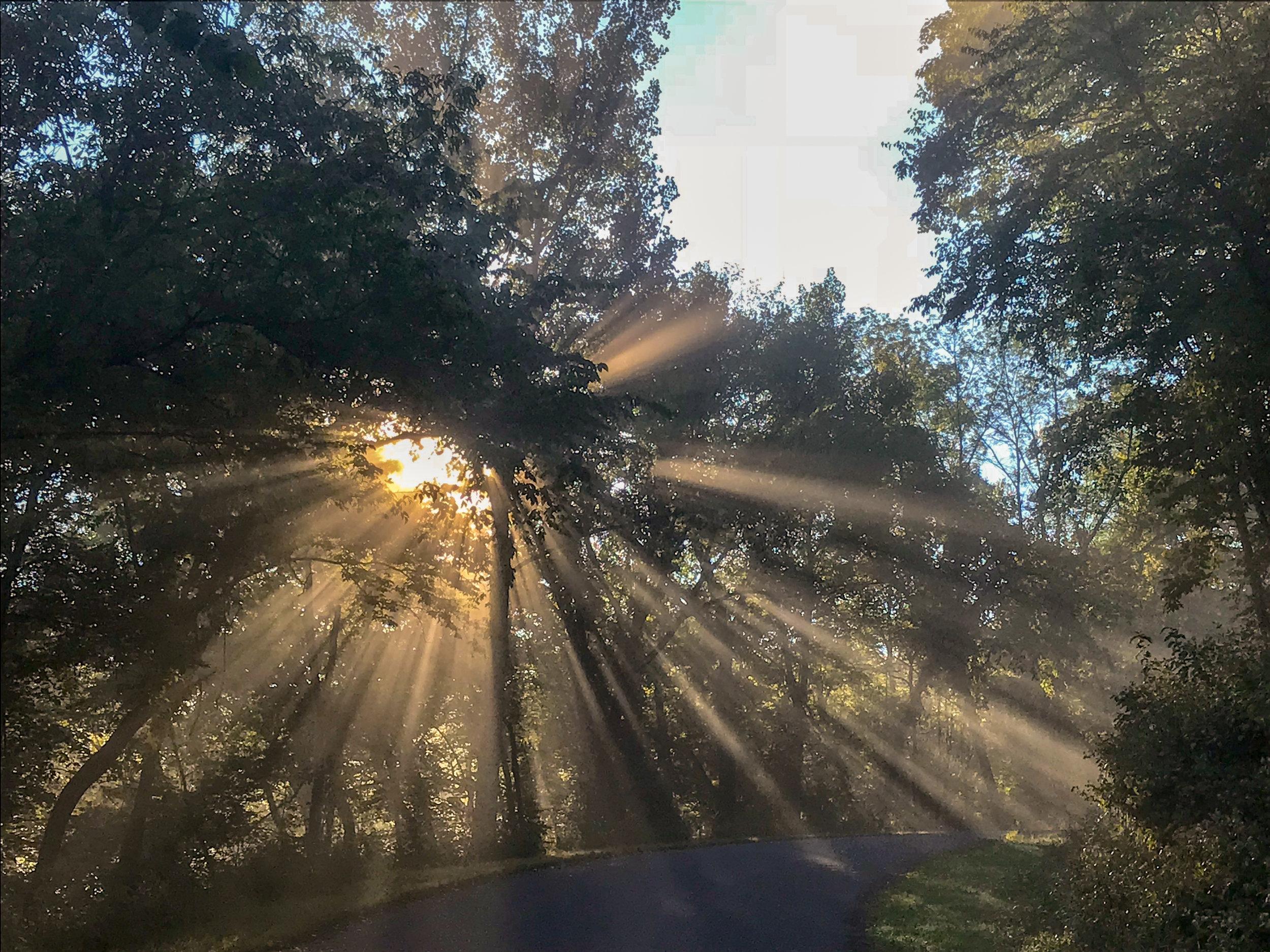 awi-outside-bluff-sunrise.jpg