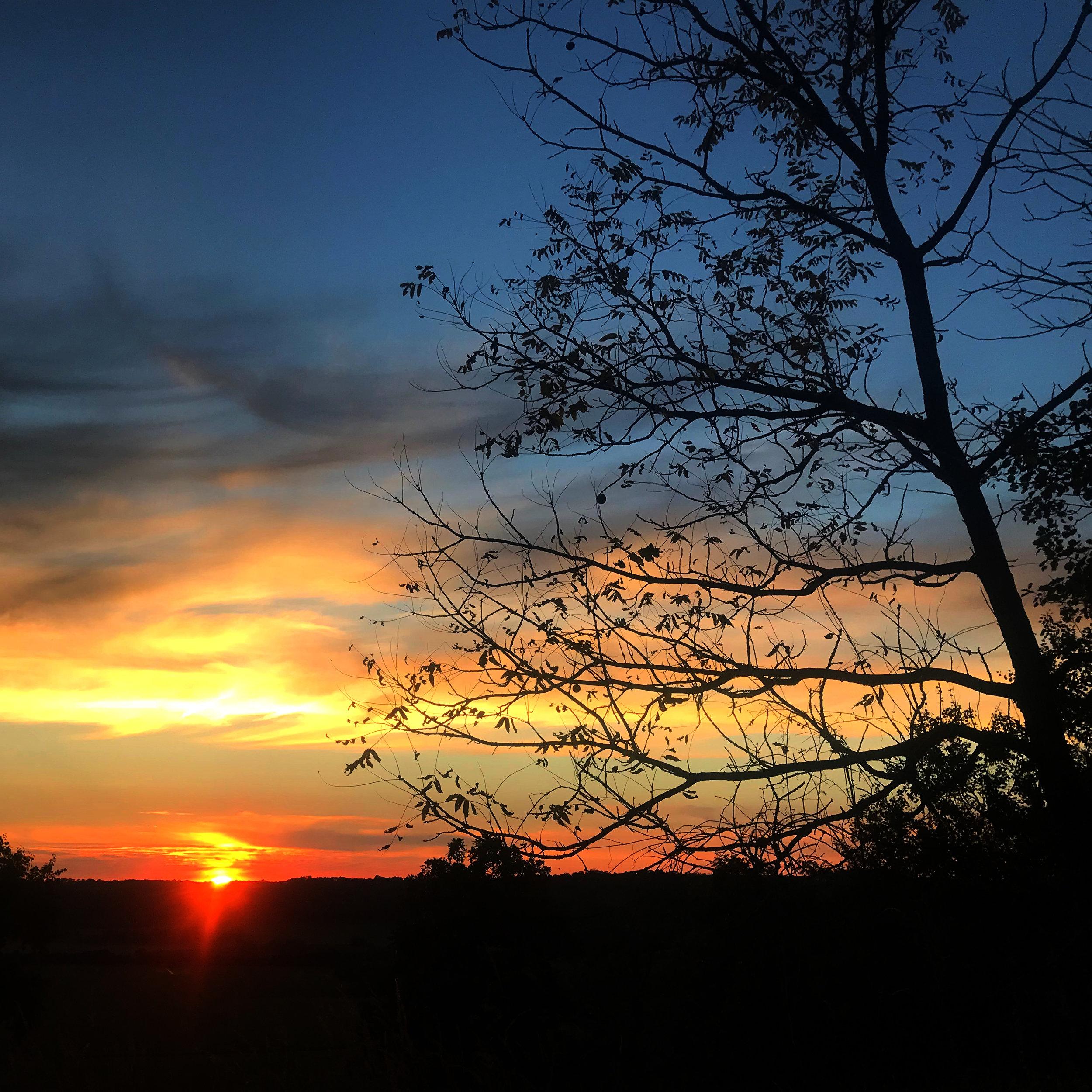 awi-outside-sunset-sq.jpg