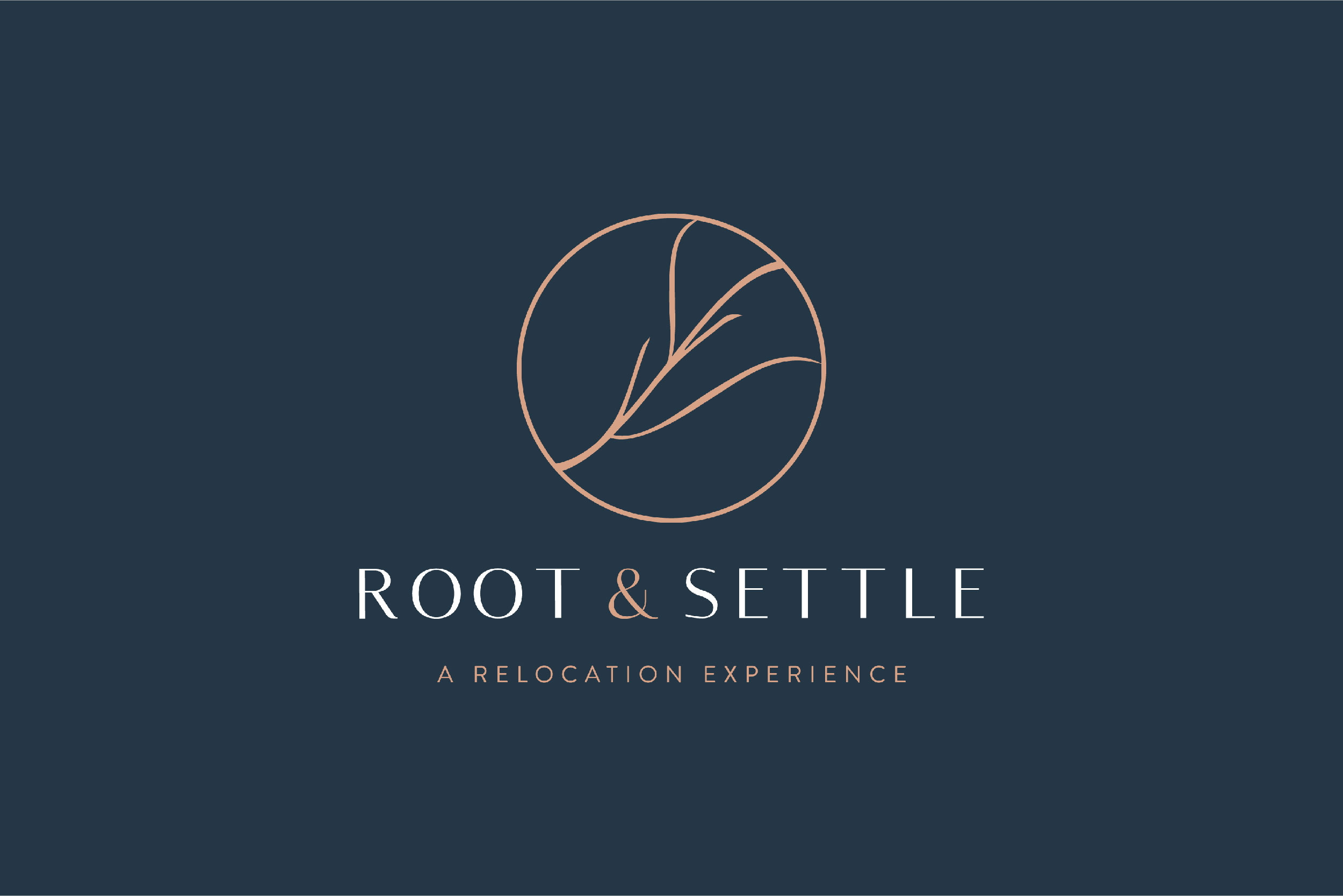 root-and-settle-01.jpg