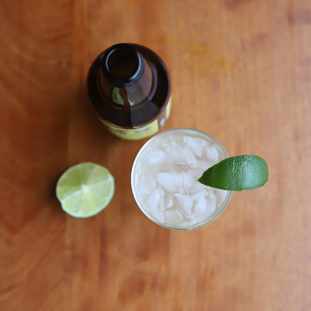 TheDRY-moscowmule_ingredientsfromabove-squareWeb.jpg