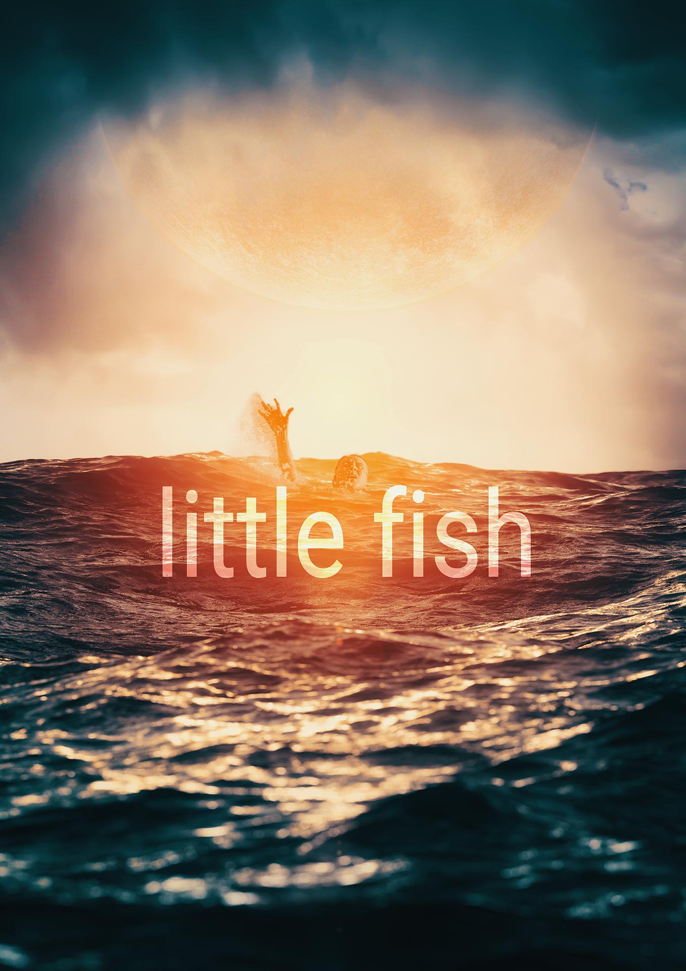 LittleFishPoster.png