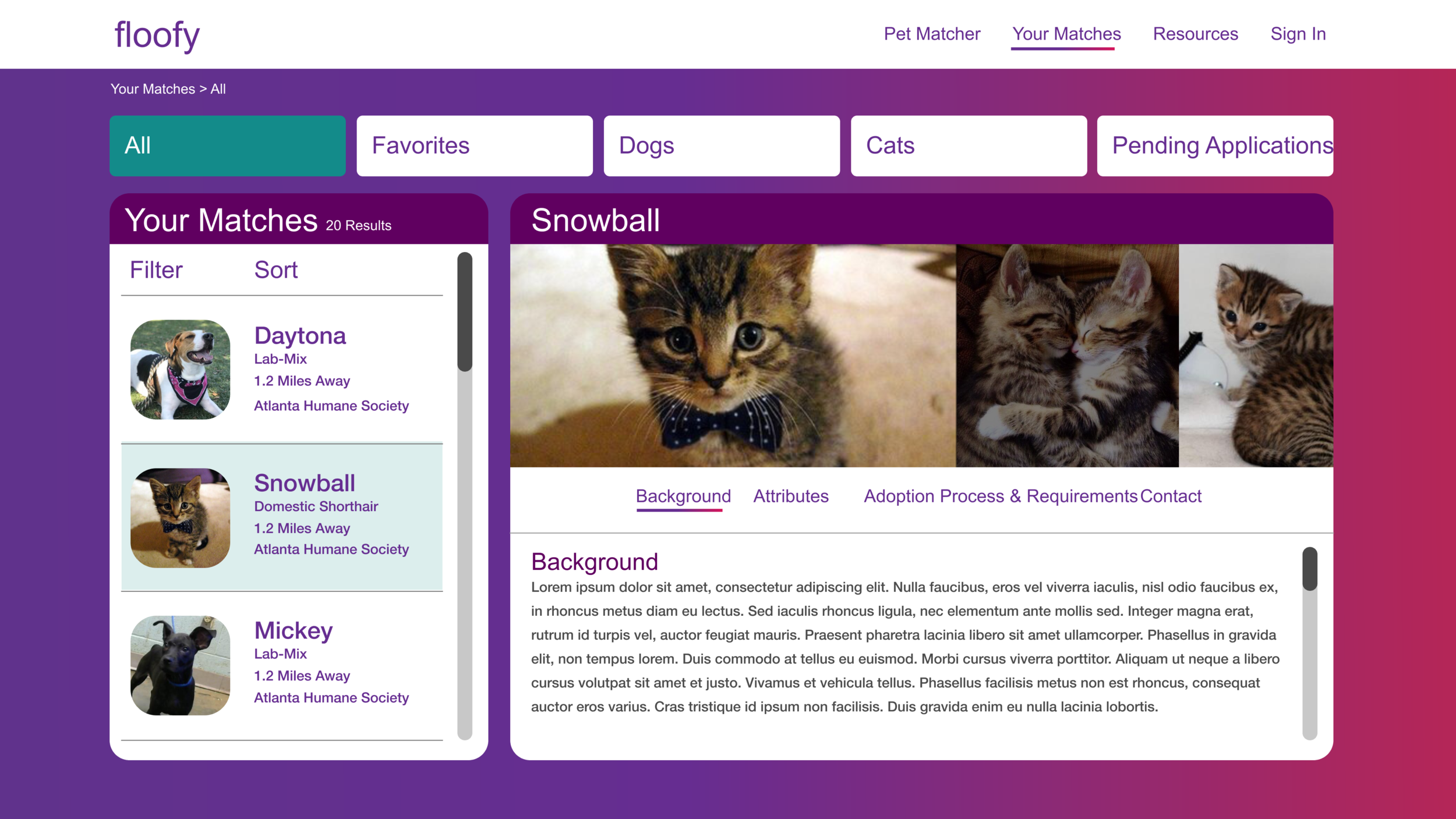 Pet Matches Dashboard - Users can see the pets that they matched with depending on the answers they gave during the Pet Matching Quiz.