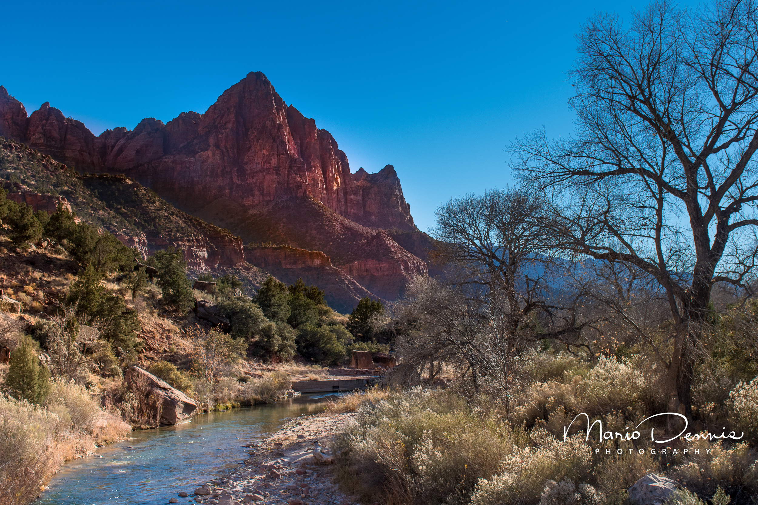 The Watchman, Zion National Park, UT