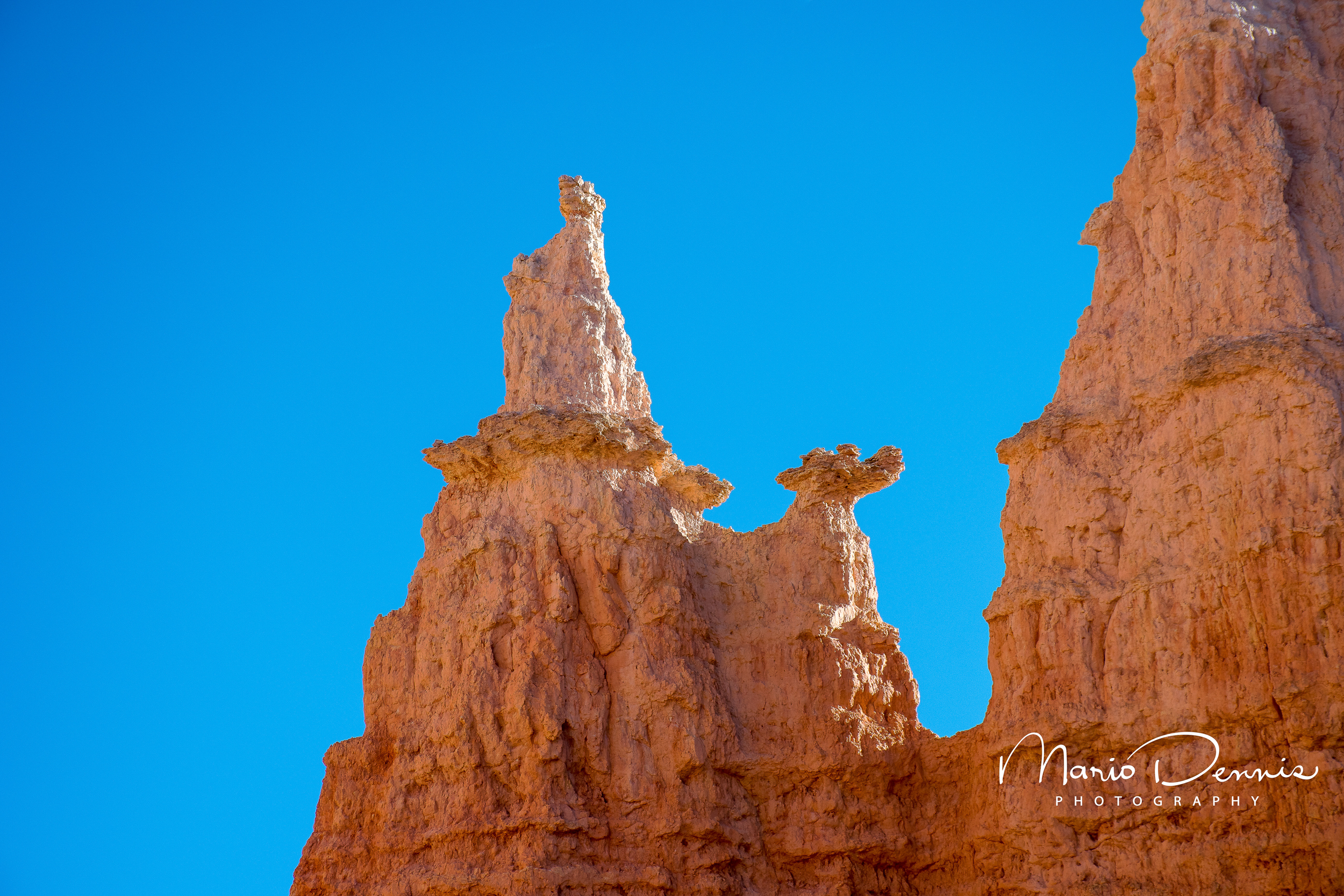 The Queen, Bryce National Park, UT