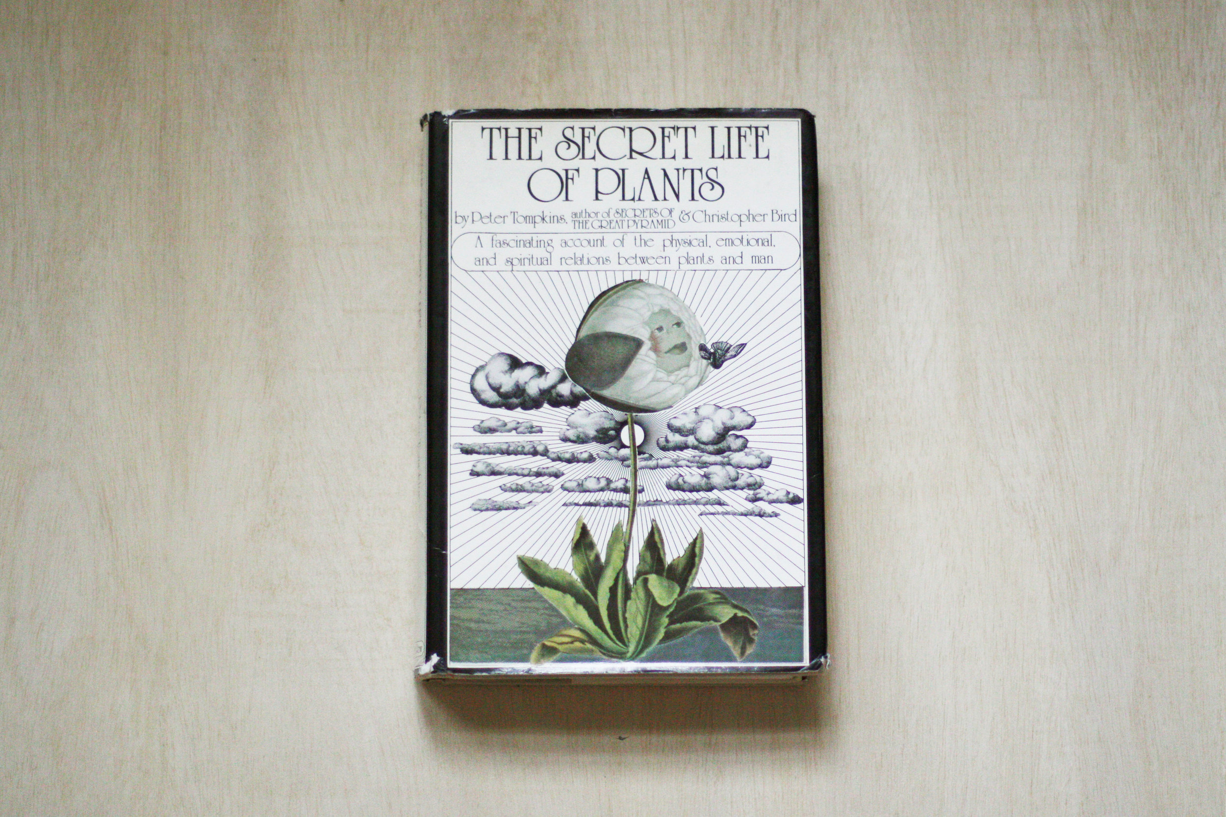 The Secret Life of Plants   by Peter Tompkins and Christopher Bird