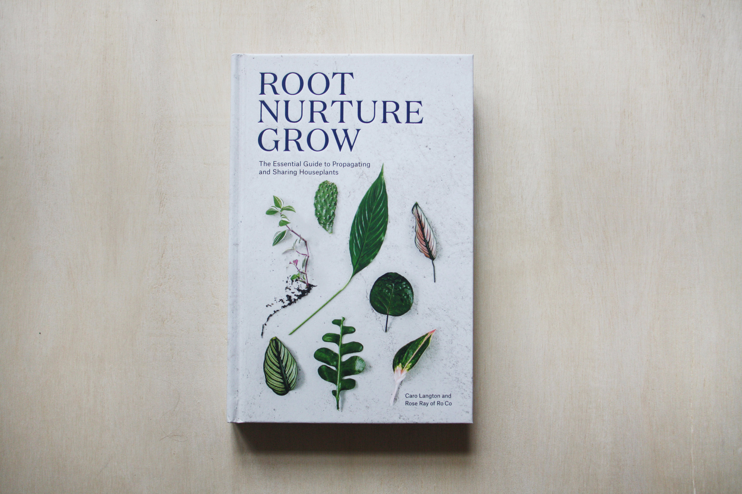 The first chapter of  Root Nurture Grow  offers helpful and beautiful instructions on how to make a variety of plant cuttings.