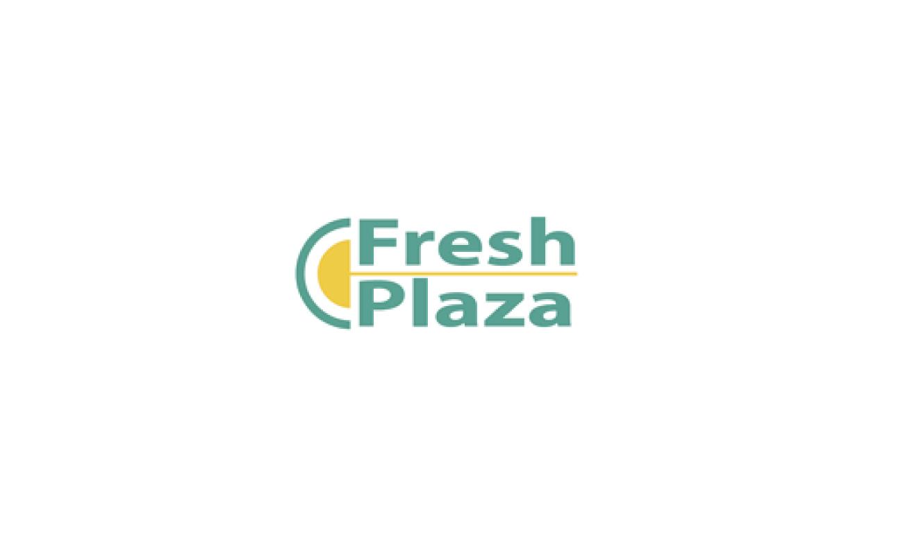 fresh-plaza.jpg