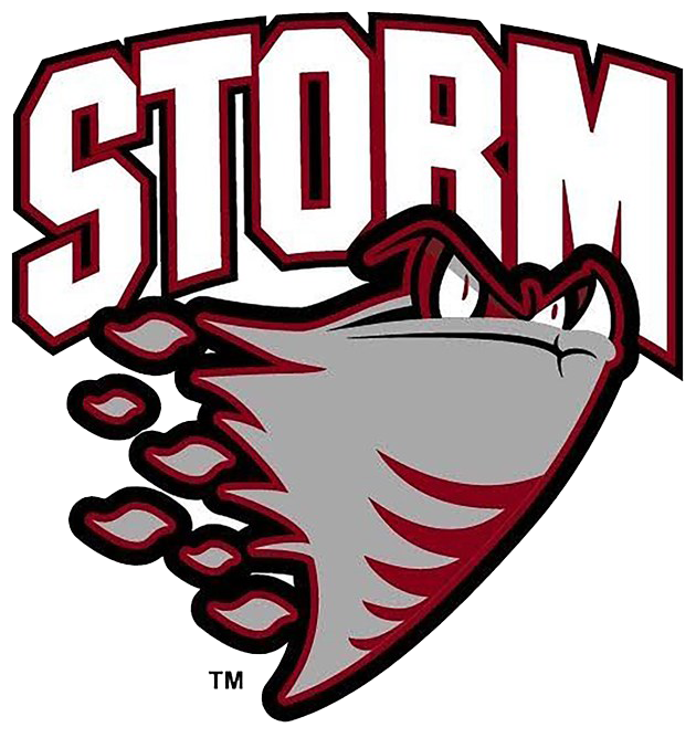 2016.02.03-guelph-storm-logo.png
