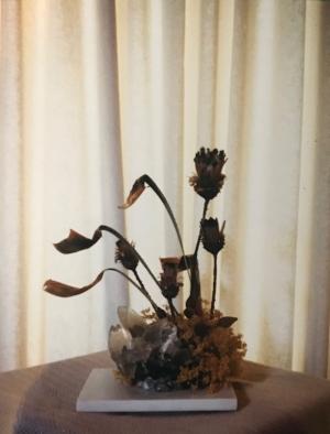 ikebana.jpg