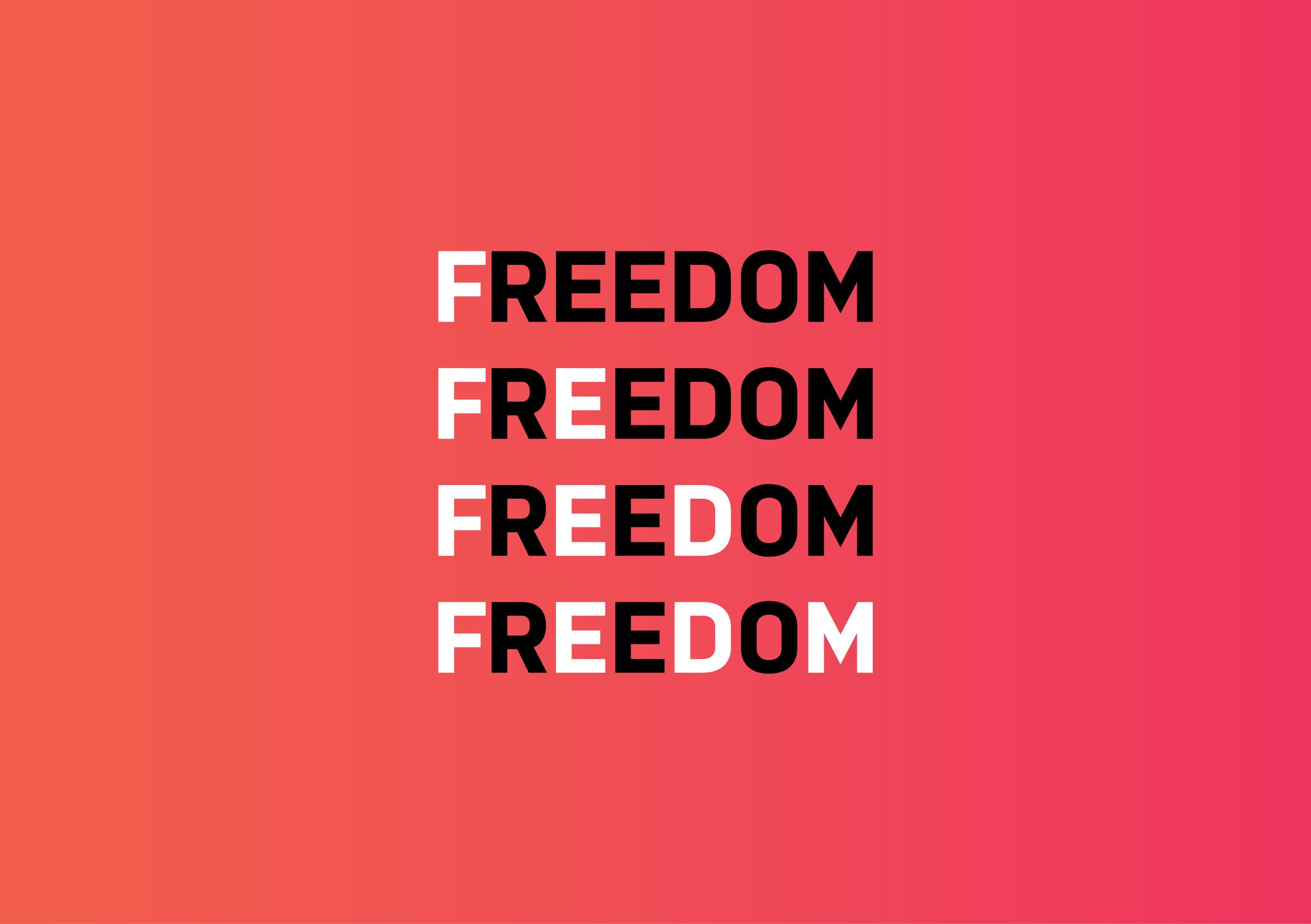 Freedom_Internet_Case_Study_032.jpg