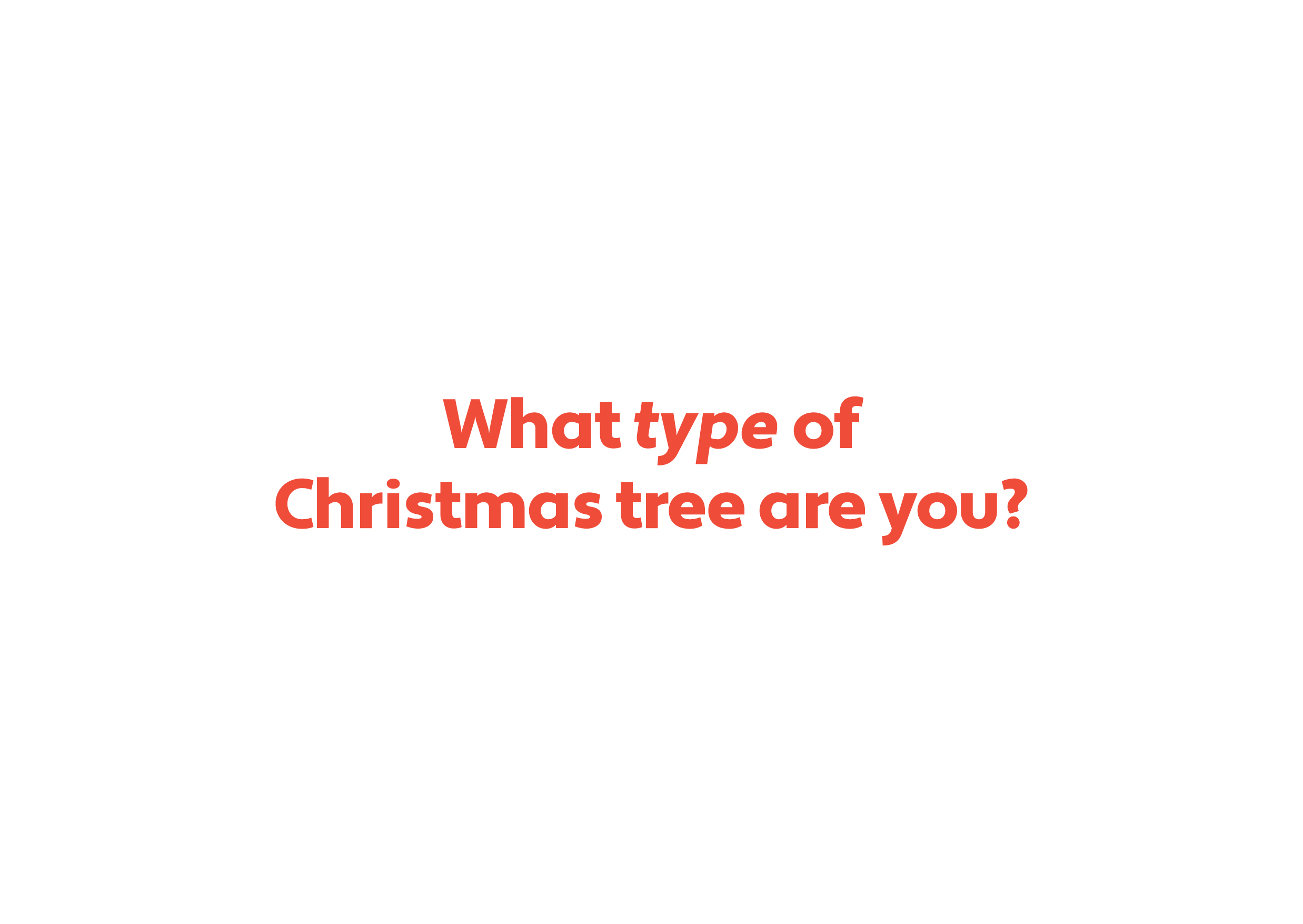 What type of Christmas tree are you?