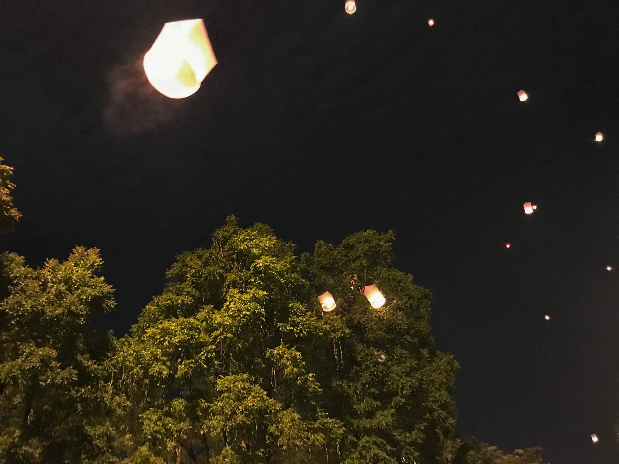 Thailand - Chiang Mai - New Years Eve - Floating lanterns in the trees