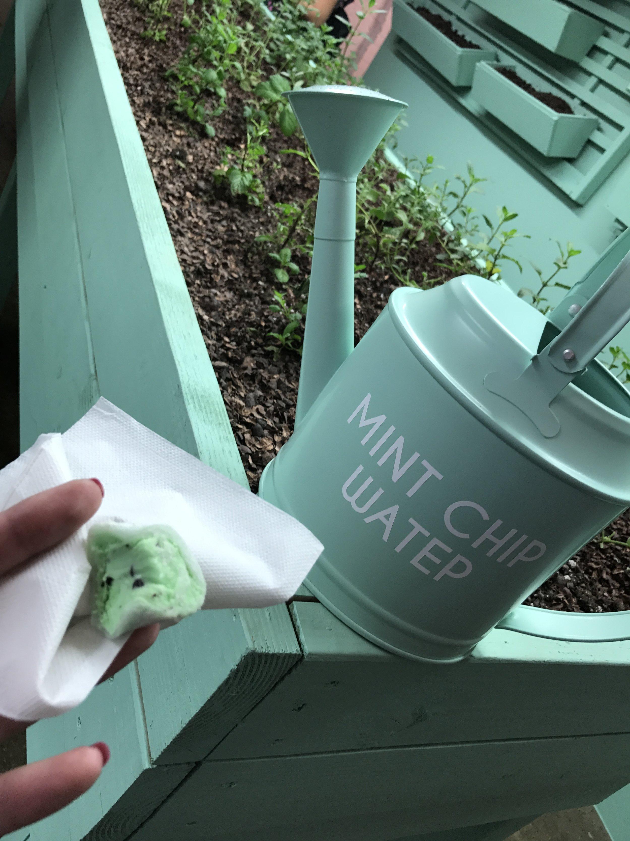 Mint Chip Life - Museum of Ice Cream Room