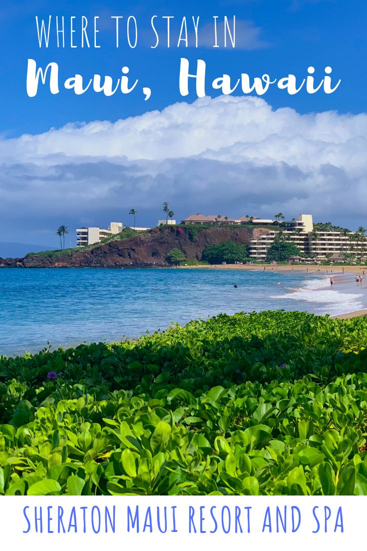 Best Hotel in Maui - Sheraton Maui Resort and Spa.png