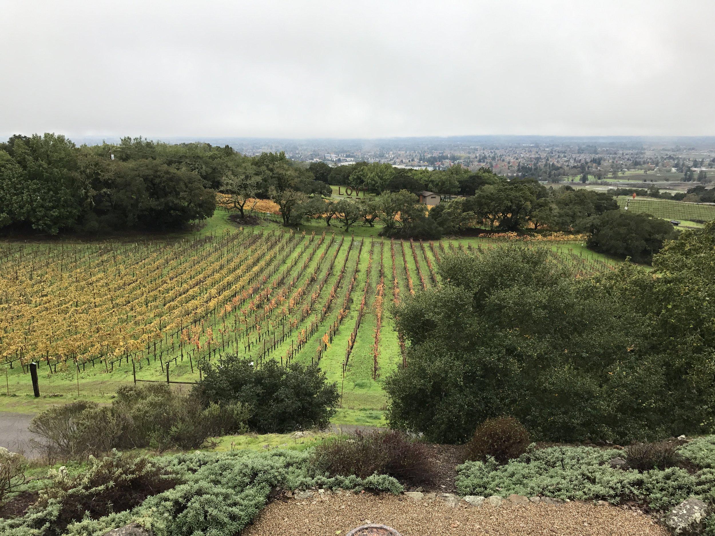 Paradise Ridge Winery - Love