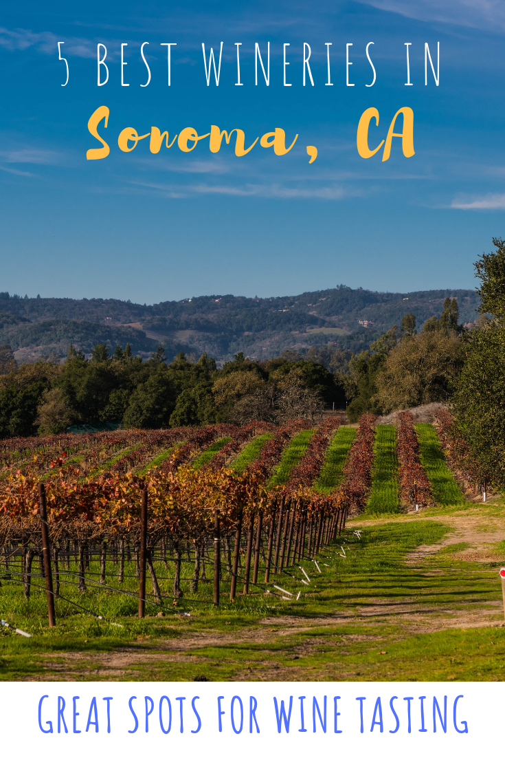 5 Best Wineries to go wine tasting in Sonoma County (1).png