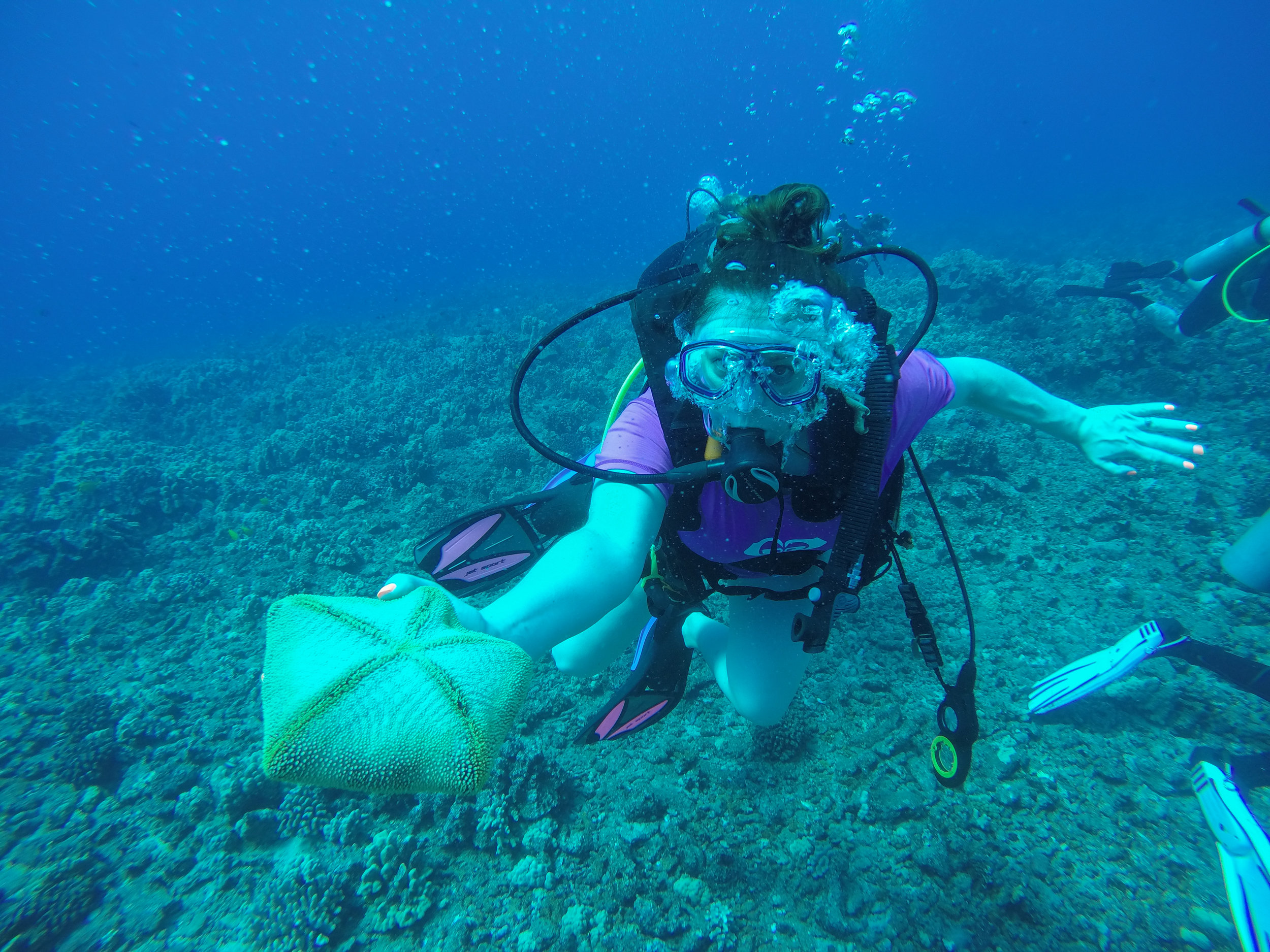 Extended Horizons - Scuba Diving in Maui