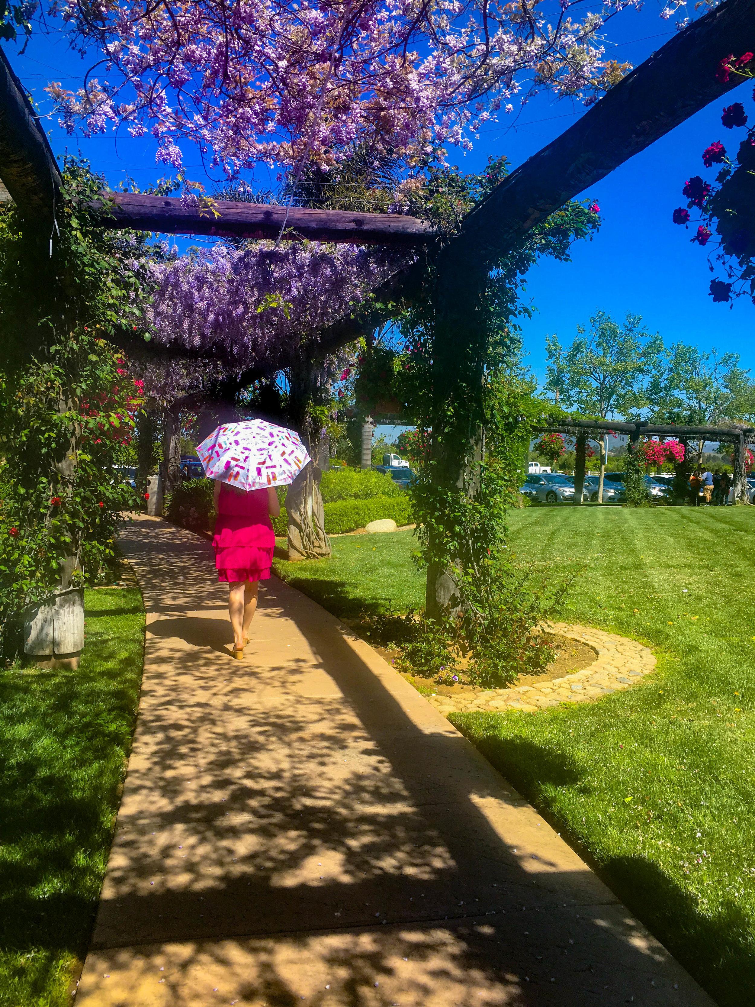 Temecula Wine Tasting Weekend Itinerary- South Coast Wine