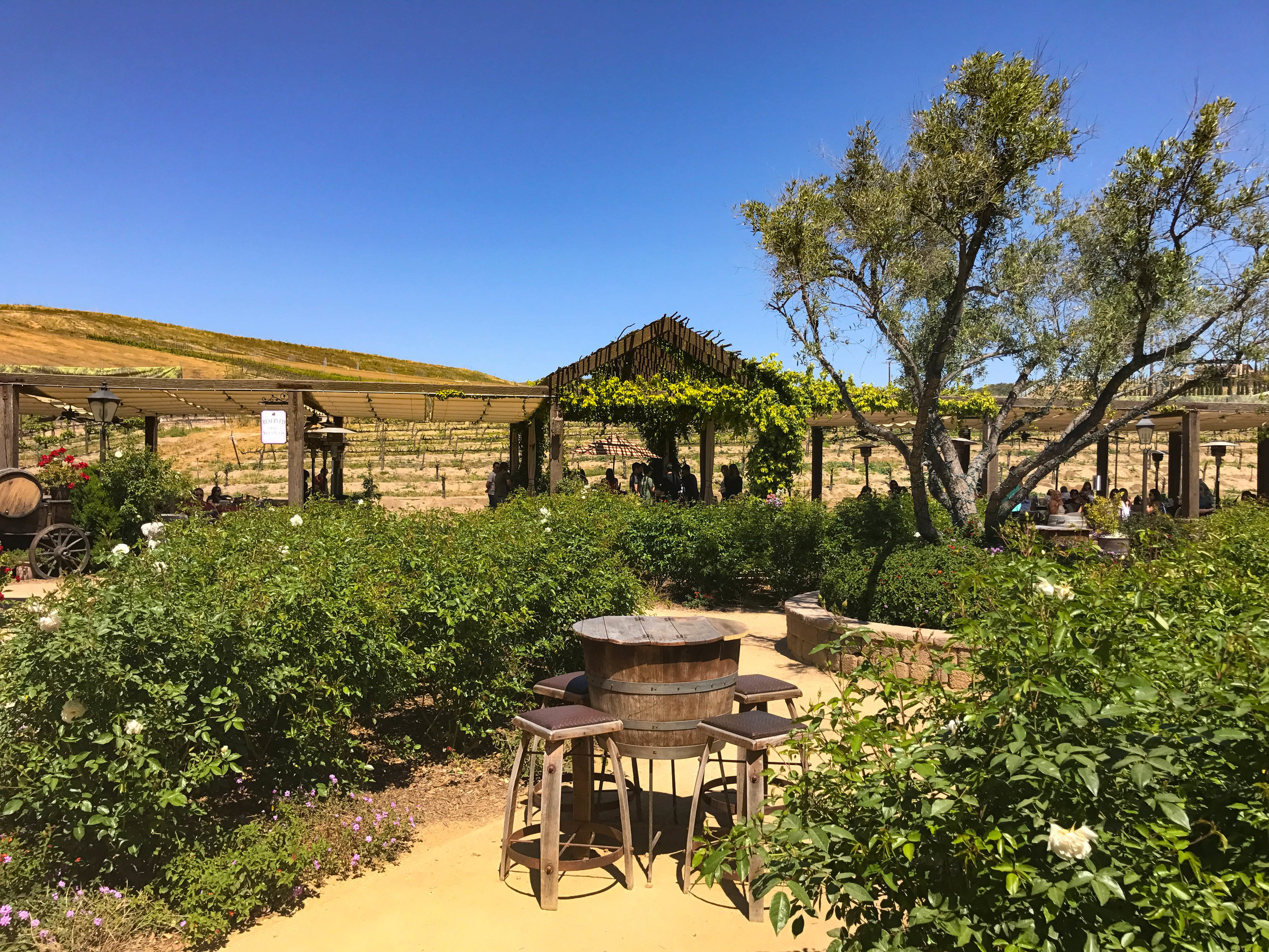 EUROPA VILLAGE WINERY - OUTSIDE TASTING BAR AND SEATING