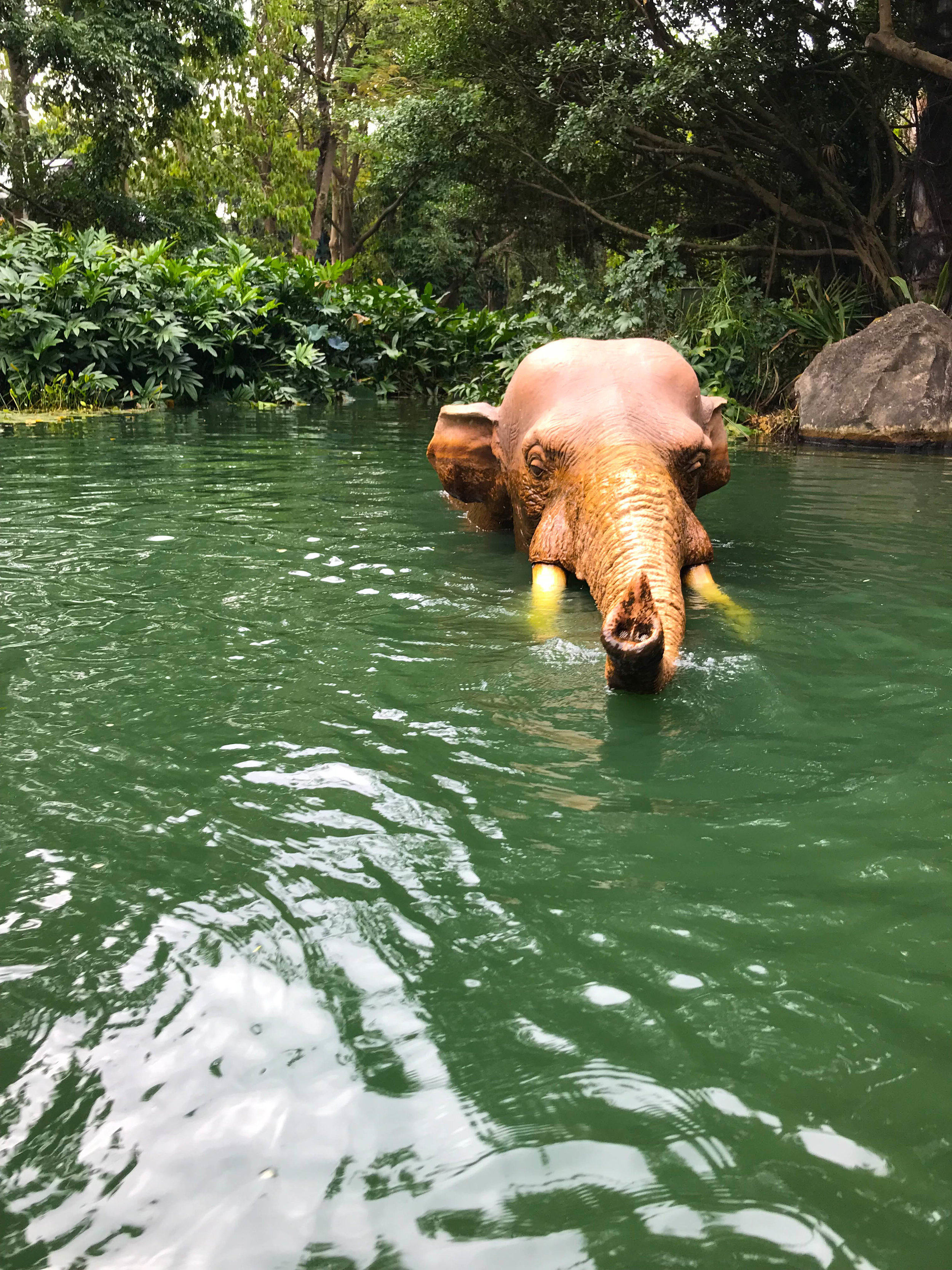 Hong Kong Disneyland - Adventureland Jungle Cruise Elephant