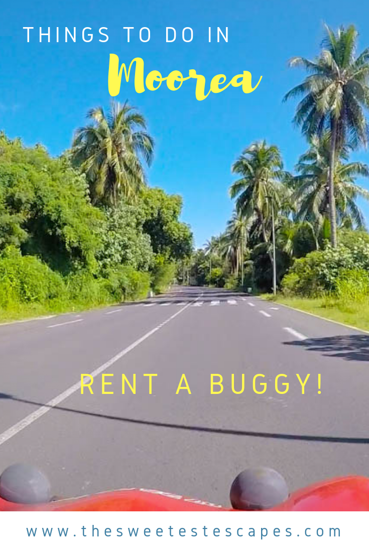 Rent a Buggy in Moorea, French Polynesia.png