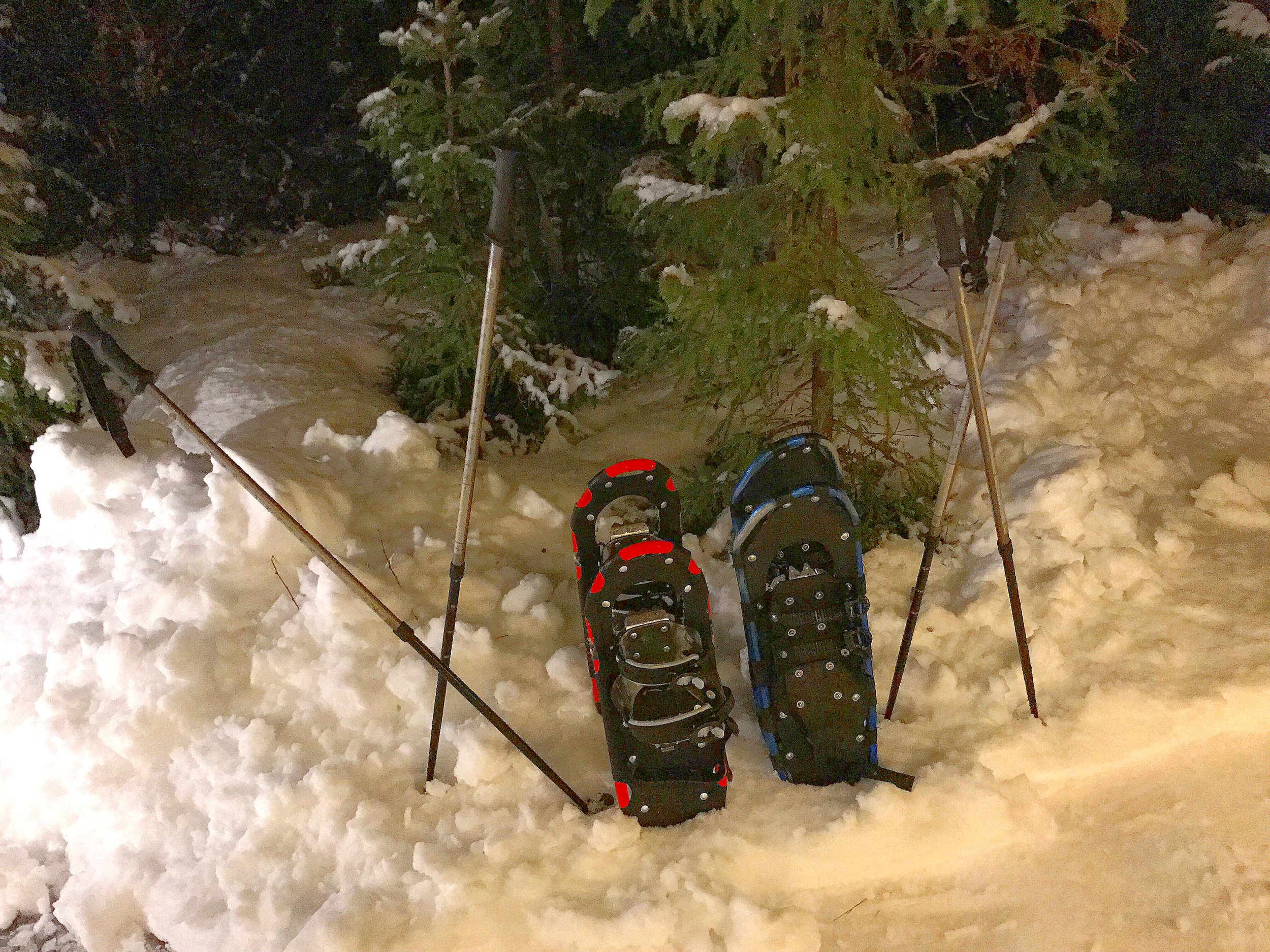 Norway Snowshoes.jpg