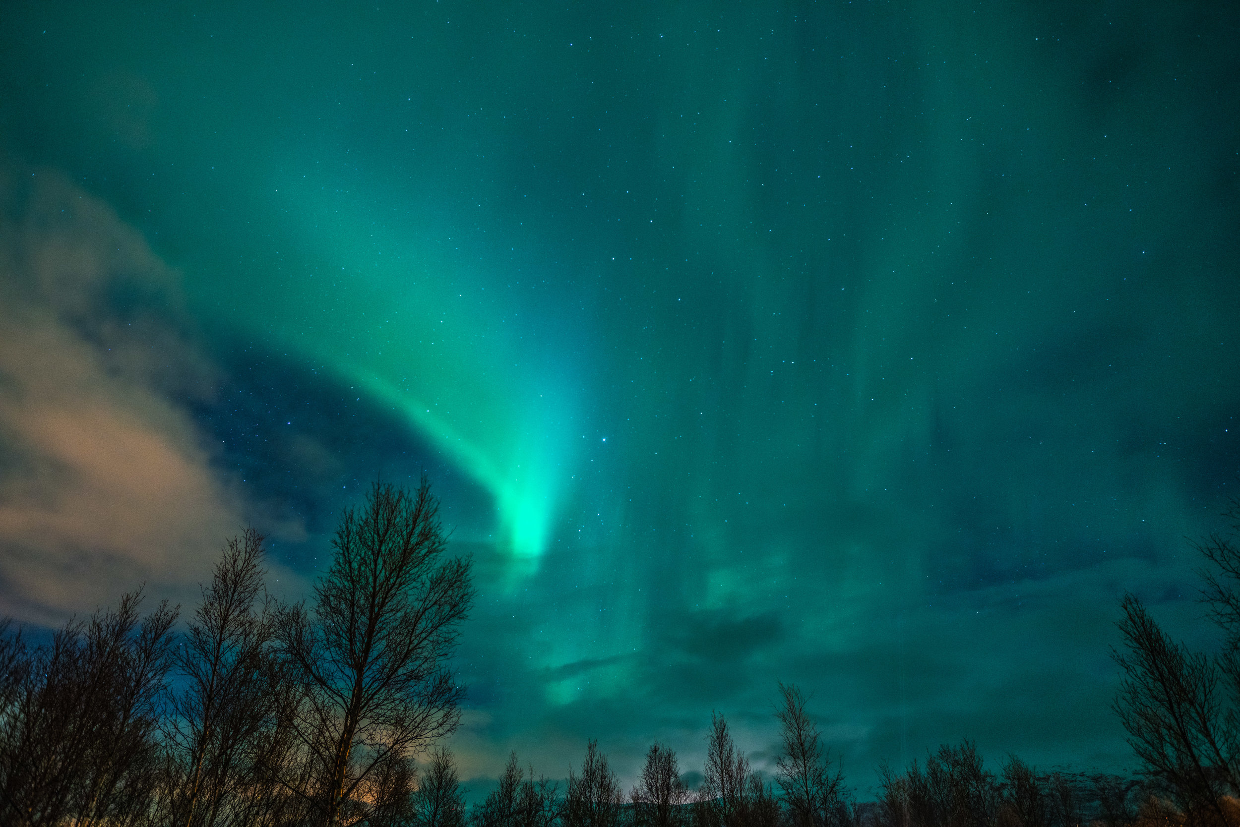 Norway_Dancing_Northern_Lights.jpg