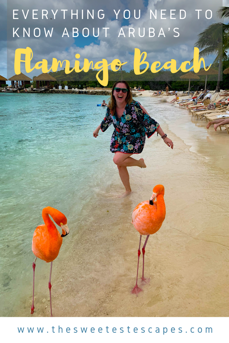 Everything you need to know about Renaissance Aruba Flamingo Beach me.png