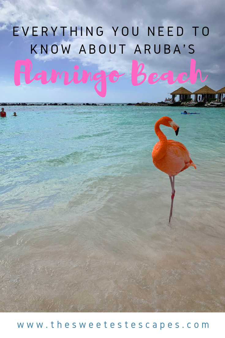 Guide to the Renaissance Island Aruba Flamingo Beach.png