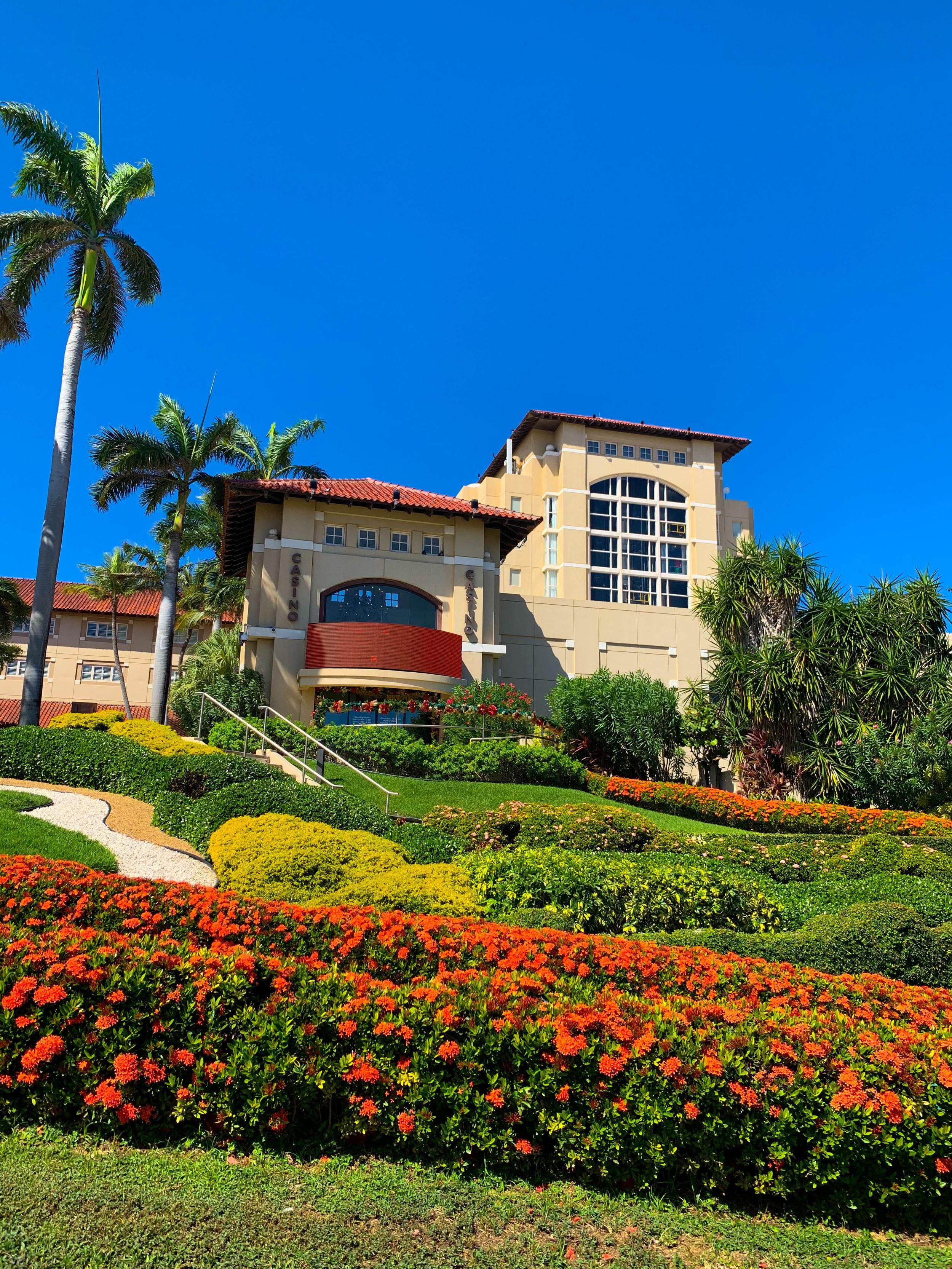 Aruba-Hyatt-Regency.jpg
