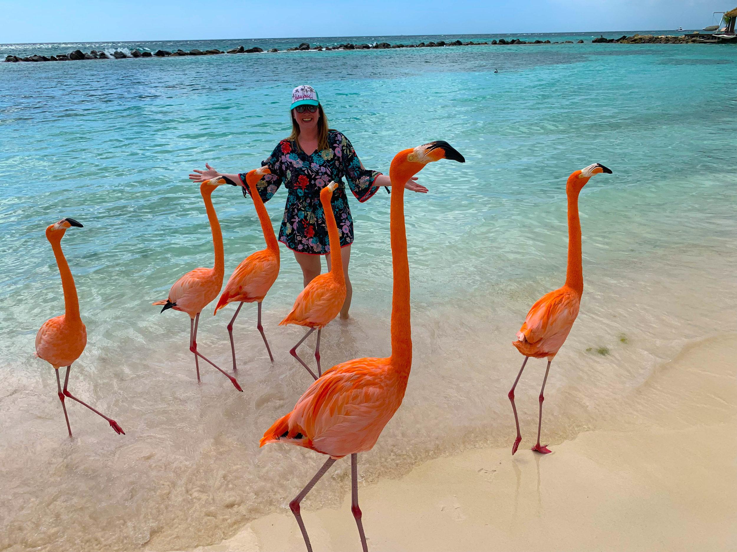Aruba-Flamingo-Island-19.jpg