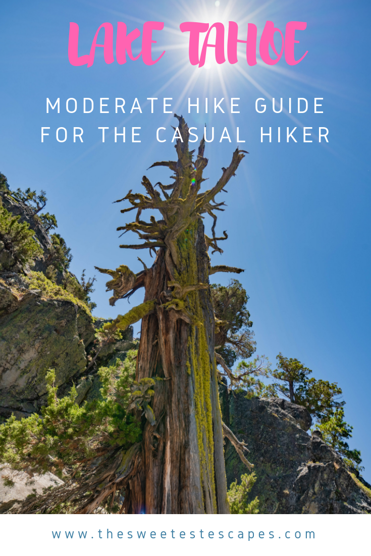 Lake Tahoe Hiking Guide.png
