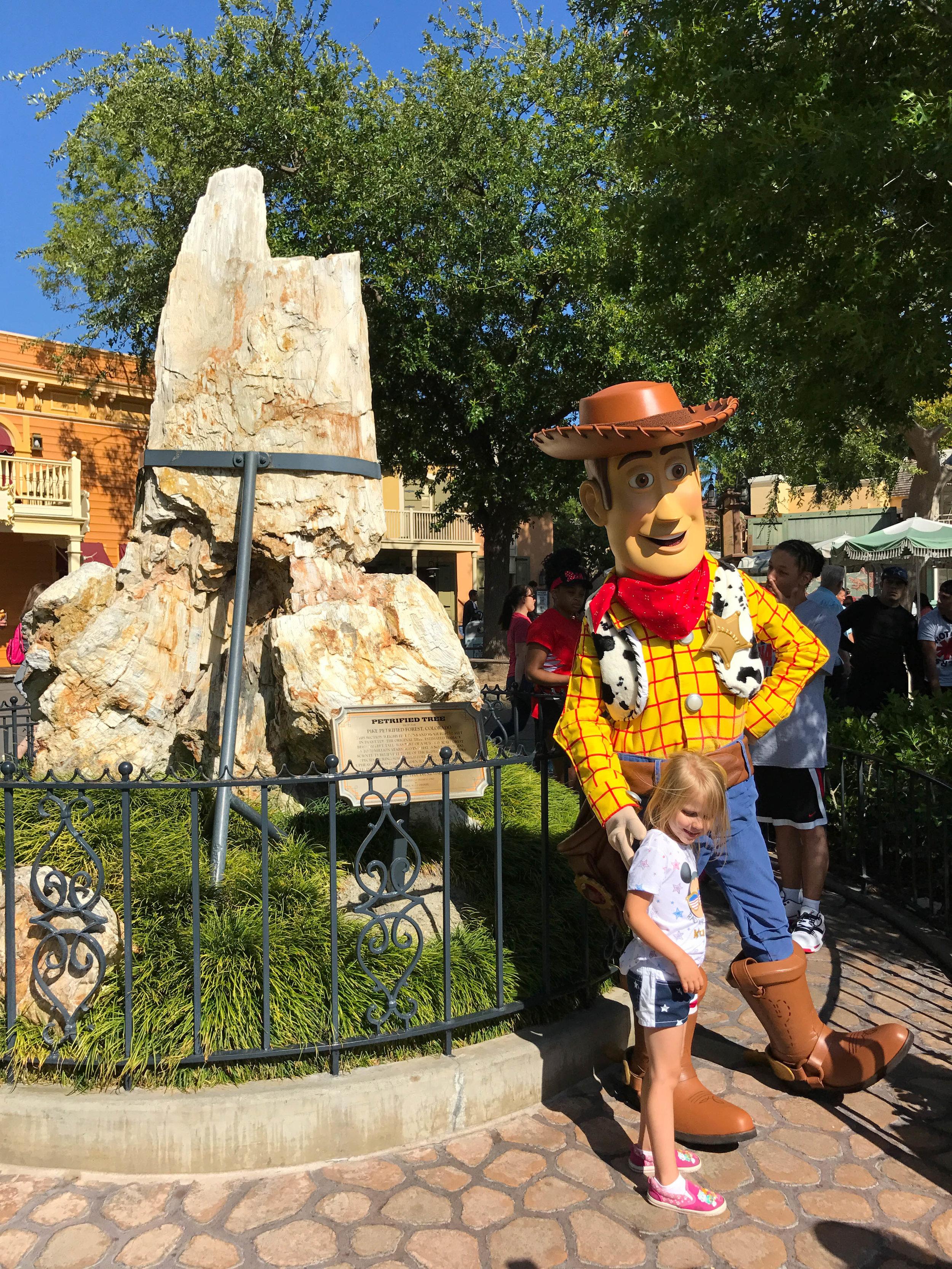 Disneyland_Woody_Petrified_wood.jpg