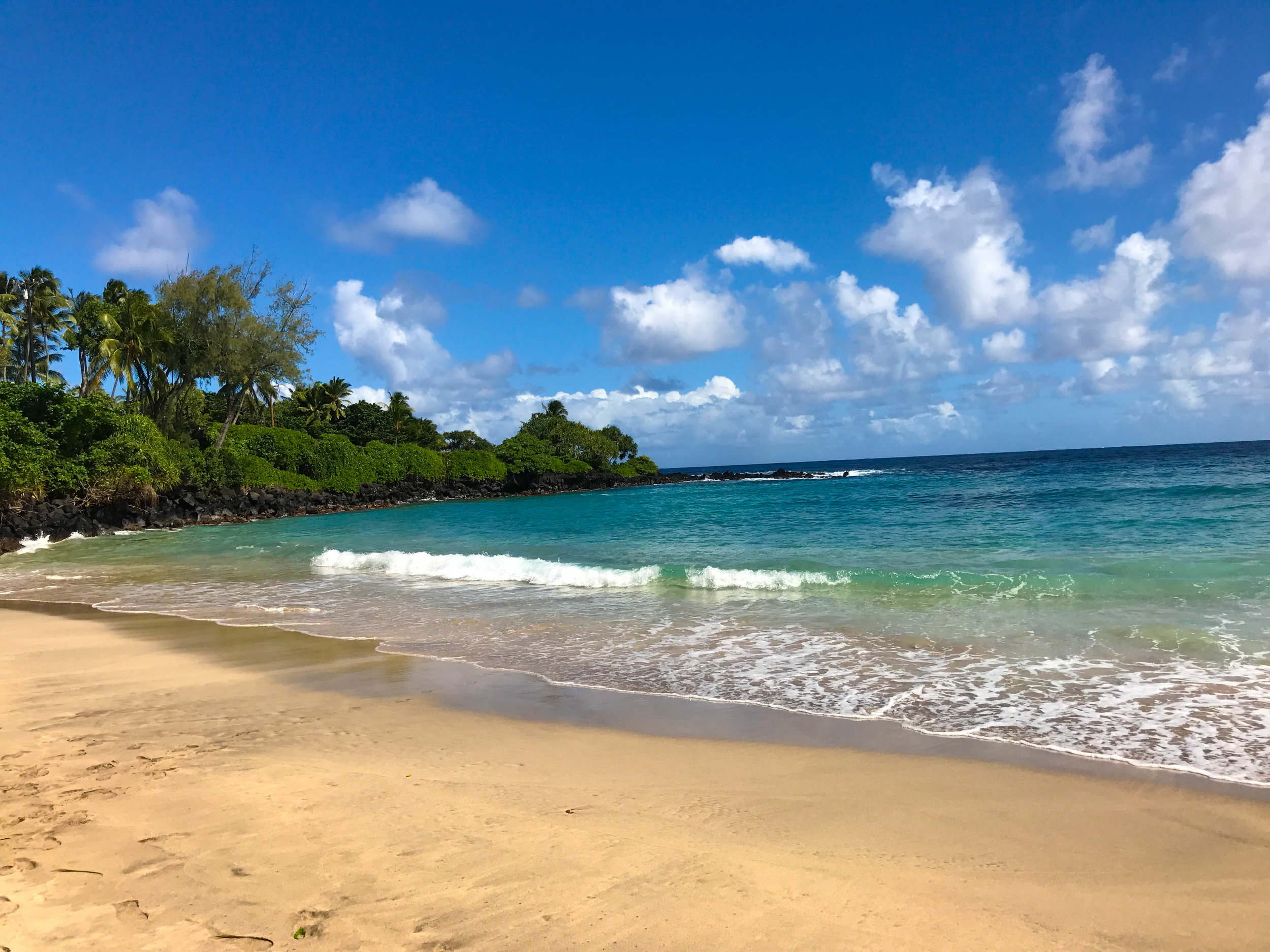 MAUI HAWAII 2016-9.jpg