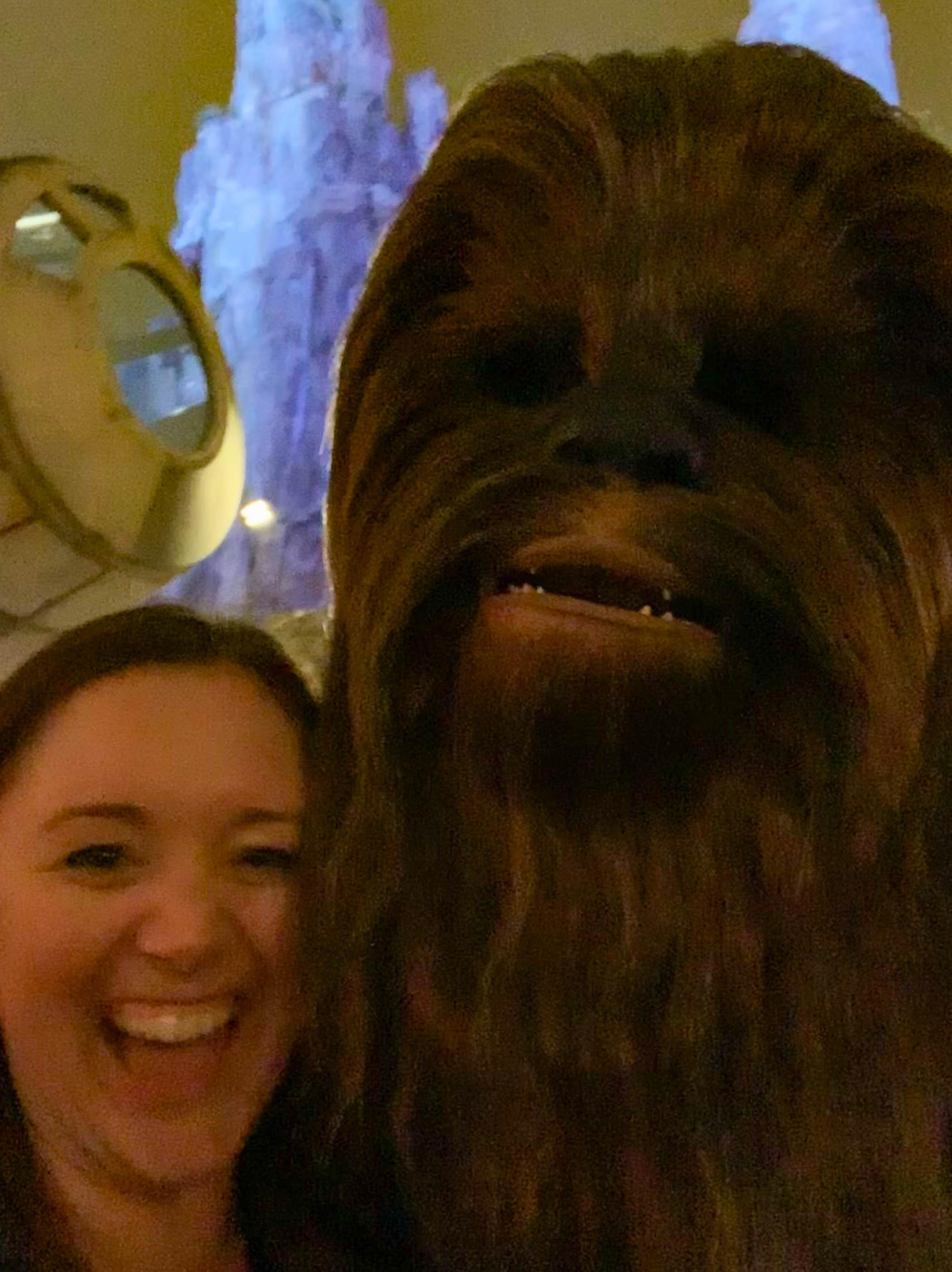Star Wars Land at Disneyland