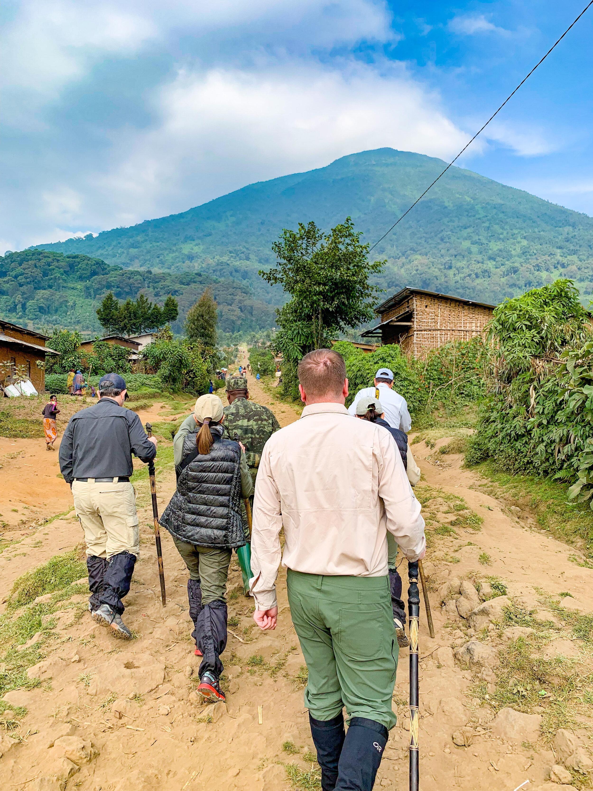 Africa_Rwanda_Gorilla_trek-29.jpg