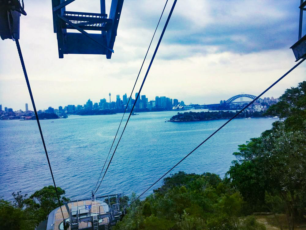 Top of Taronga Zoo