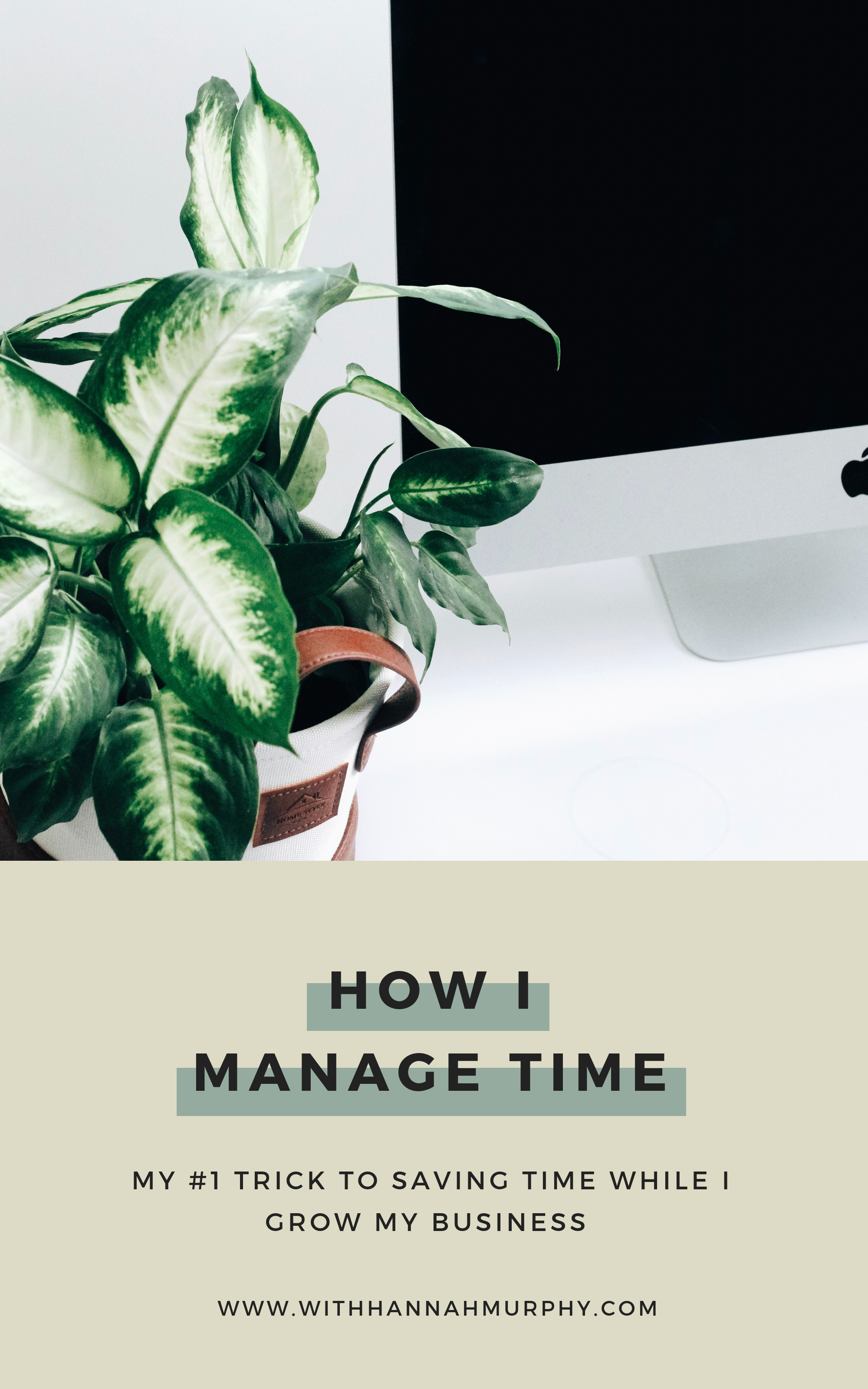 Wanting to save time in your work week so you can focus on growing your business and gaining clients? This simple trick has saved me HOURS (and possibly even days, let's be honest)