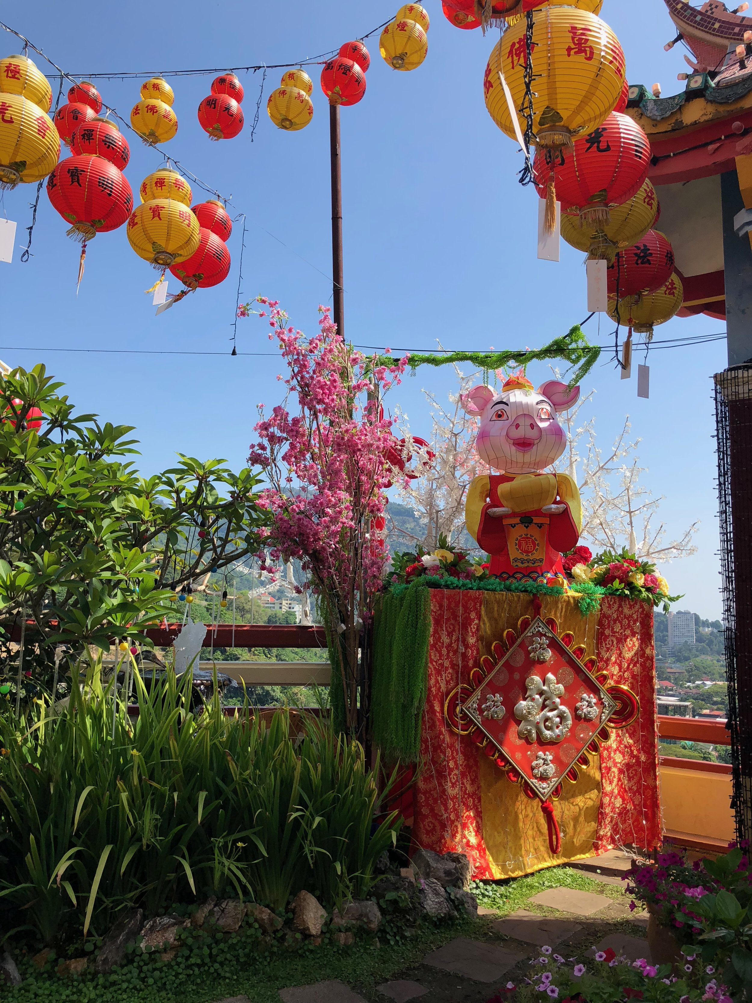 The celebration for the Year of the Boar in Kek Lok Si Temple.