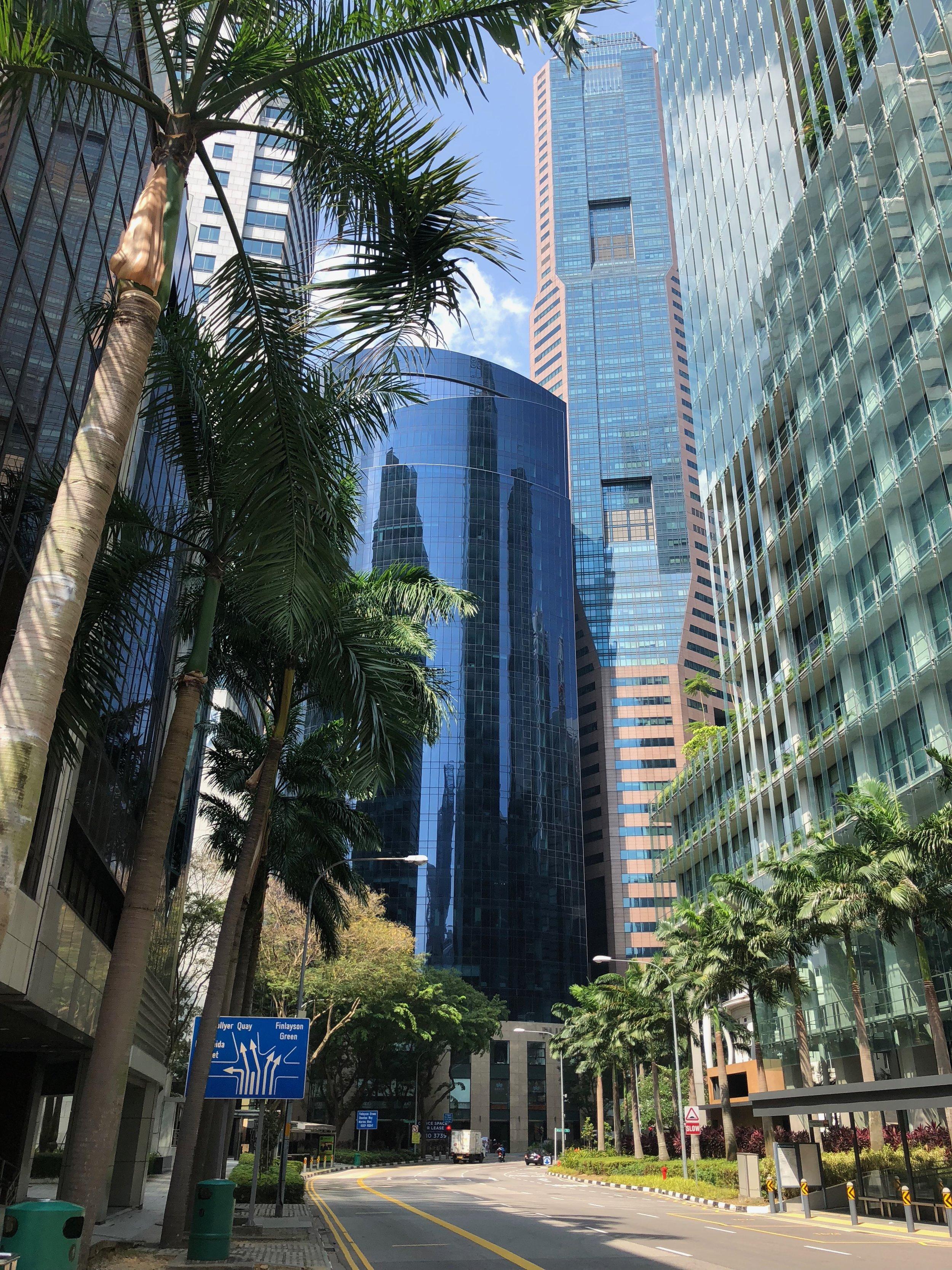 Caminaba por el Downtown Core para alcanzar las atracciones que más quería ver. Me gustaba como había tantos edificios y al mismo tiempo tantas palmeras. Era como una jungla en una ciudad metropolitano.