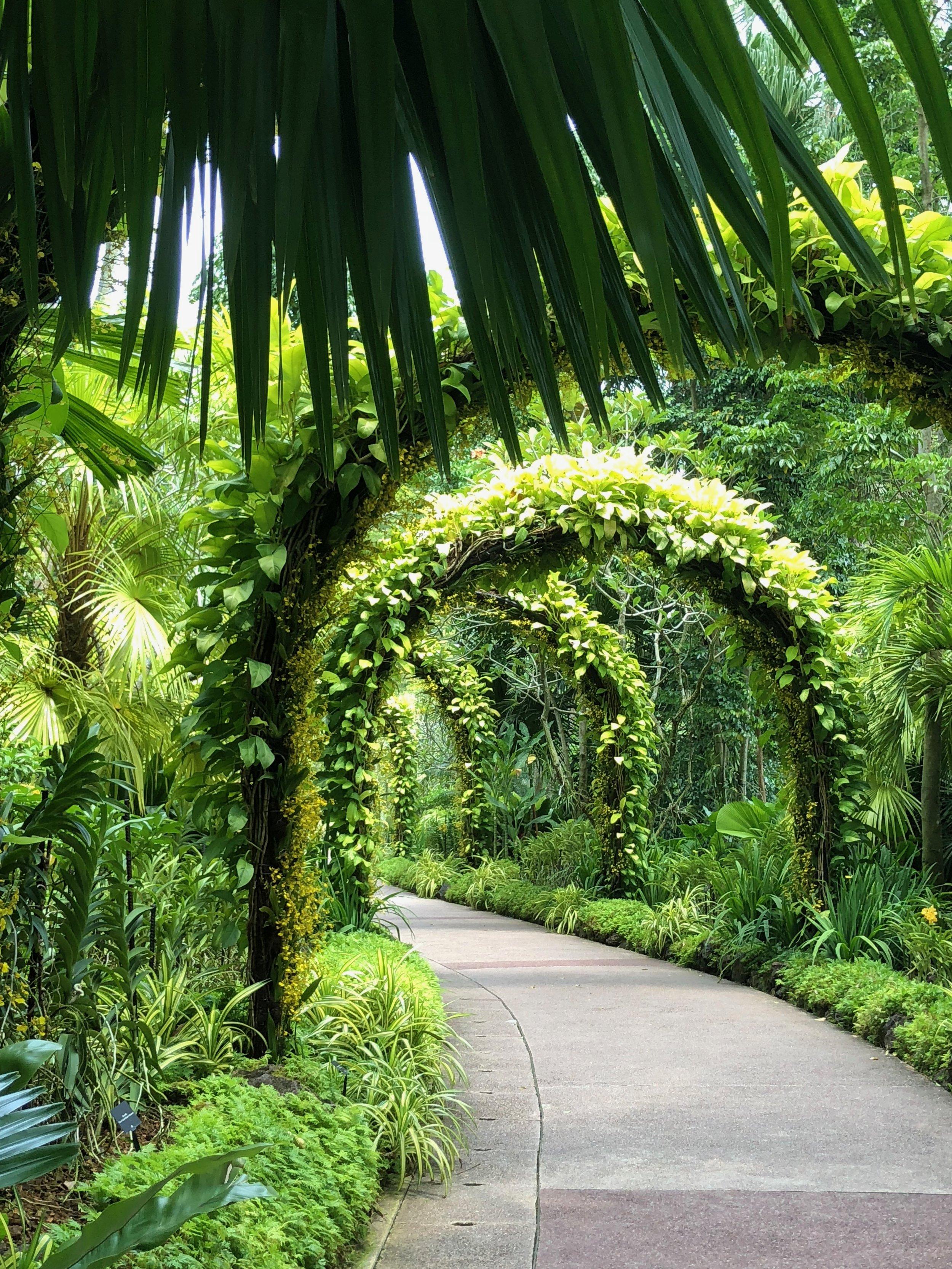 Un arco de plantas en el jardín privado de orquídeas. No se puede ver ningunos de los rascacielos.