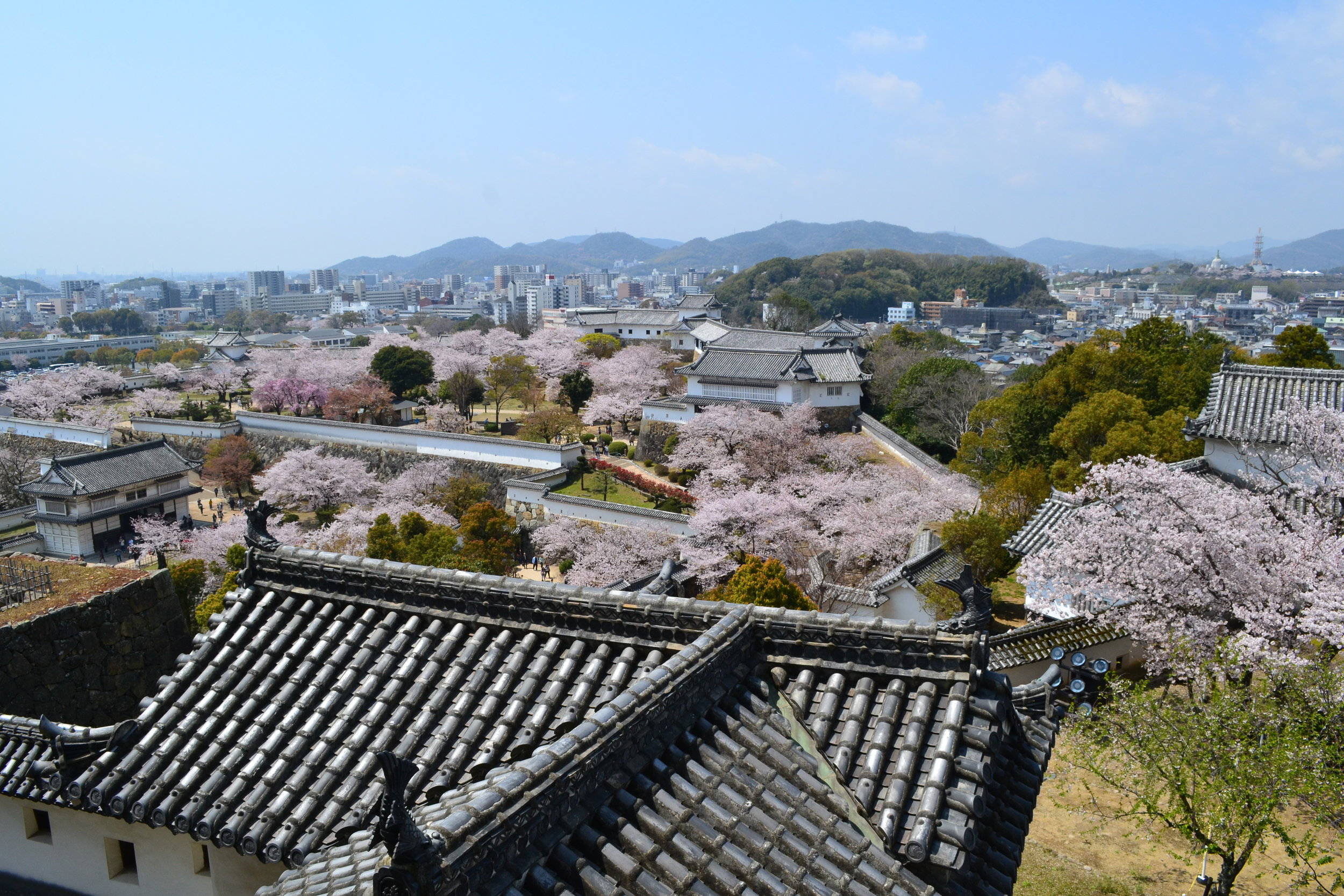 Looking out at the city of Himeji from inside the castle. You can see many cherry blossom trees, and the park I mentioned earlier in the back of the photo.
