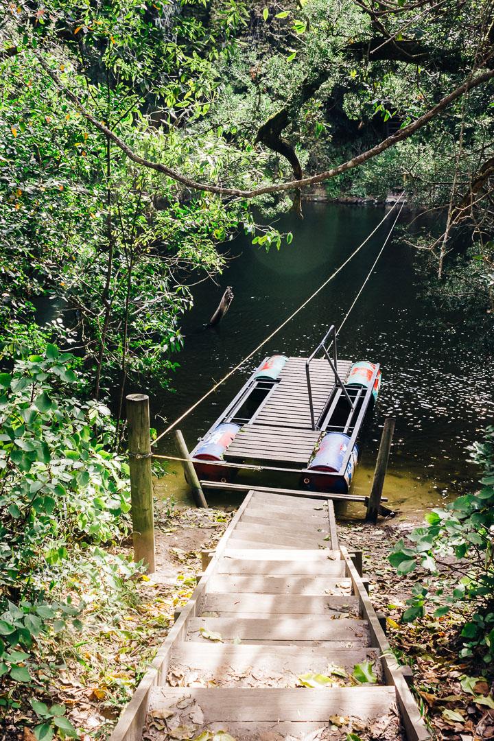 Kingfisher Trail-4.jpg