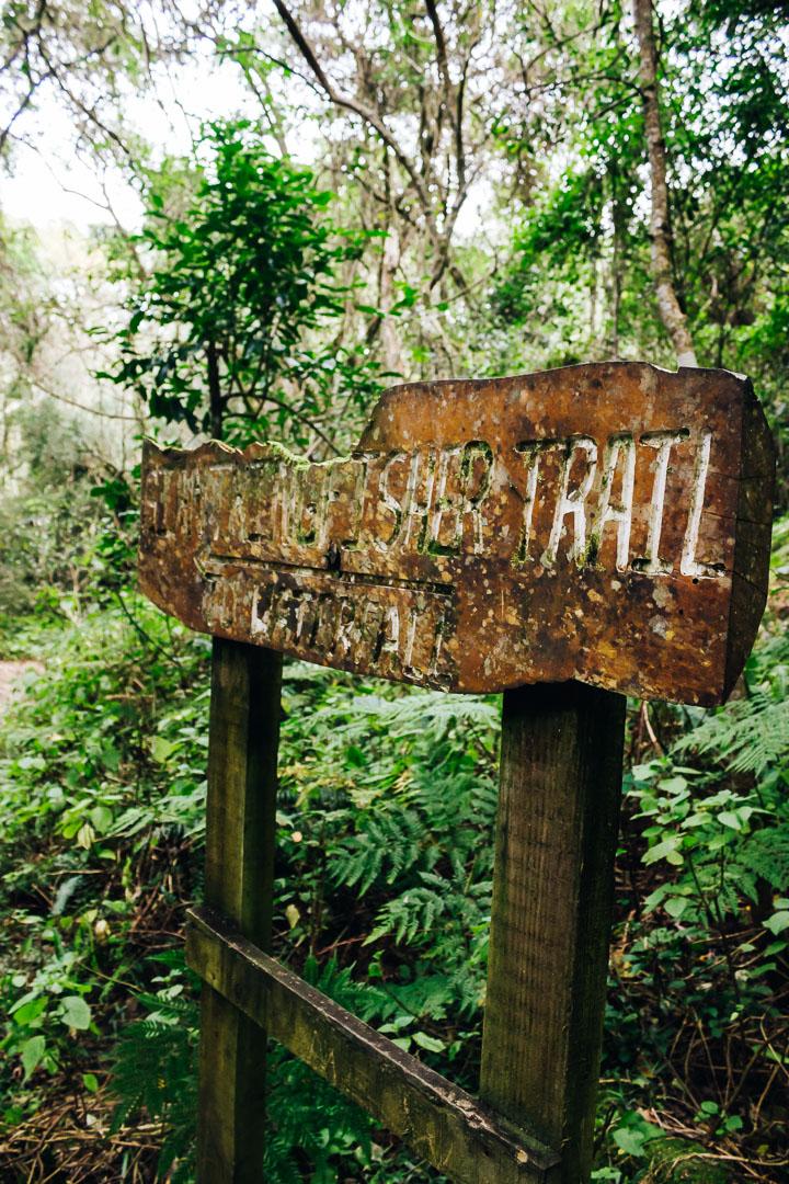 Kingfisher Trail-17.jpg