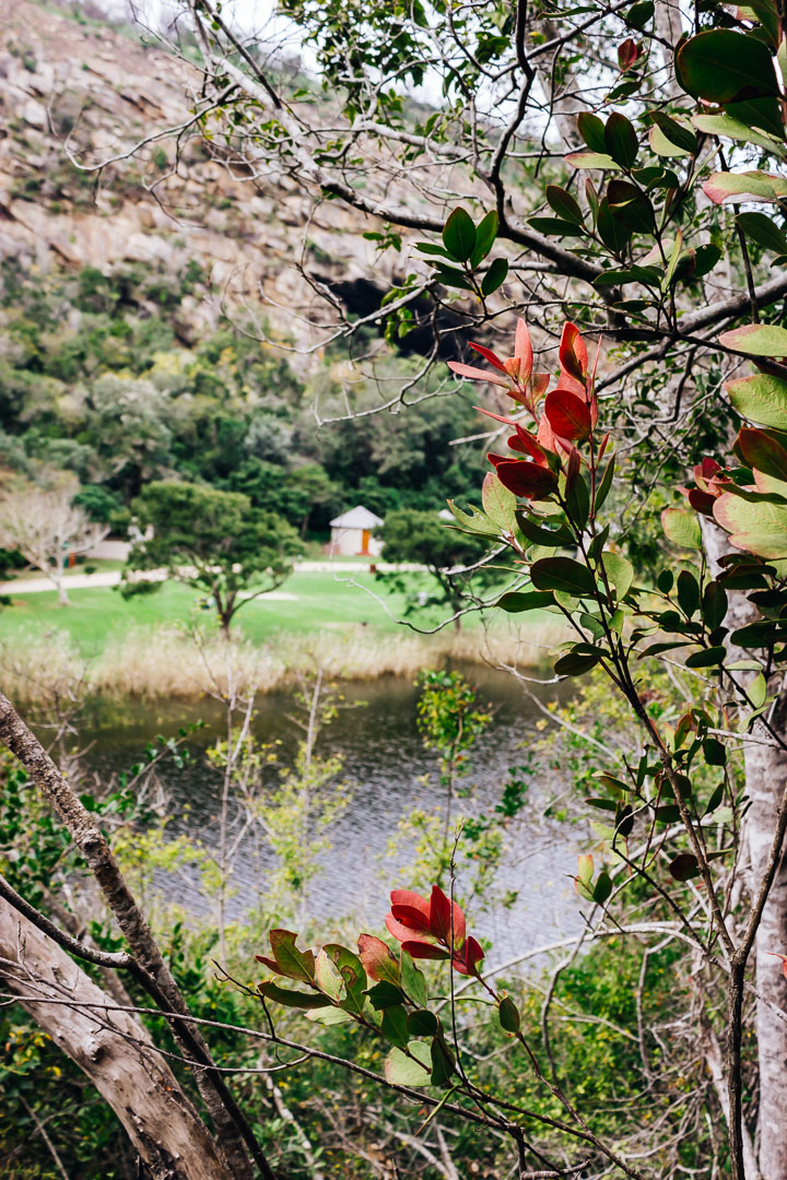 Kingfisher Trail-23.jpg
