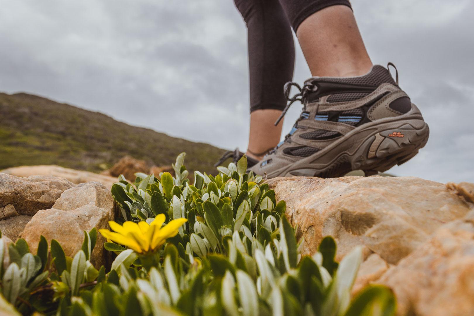 Hi-Tec hiking boots