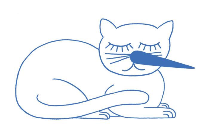 Katze, ZKB