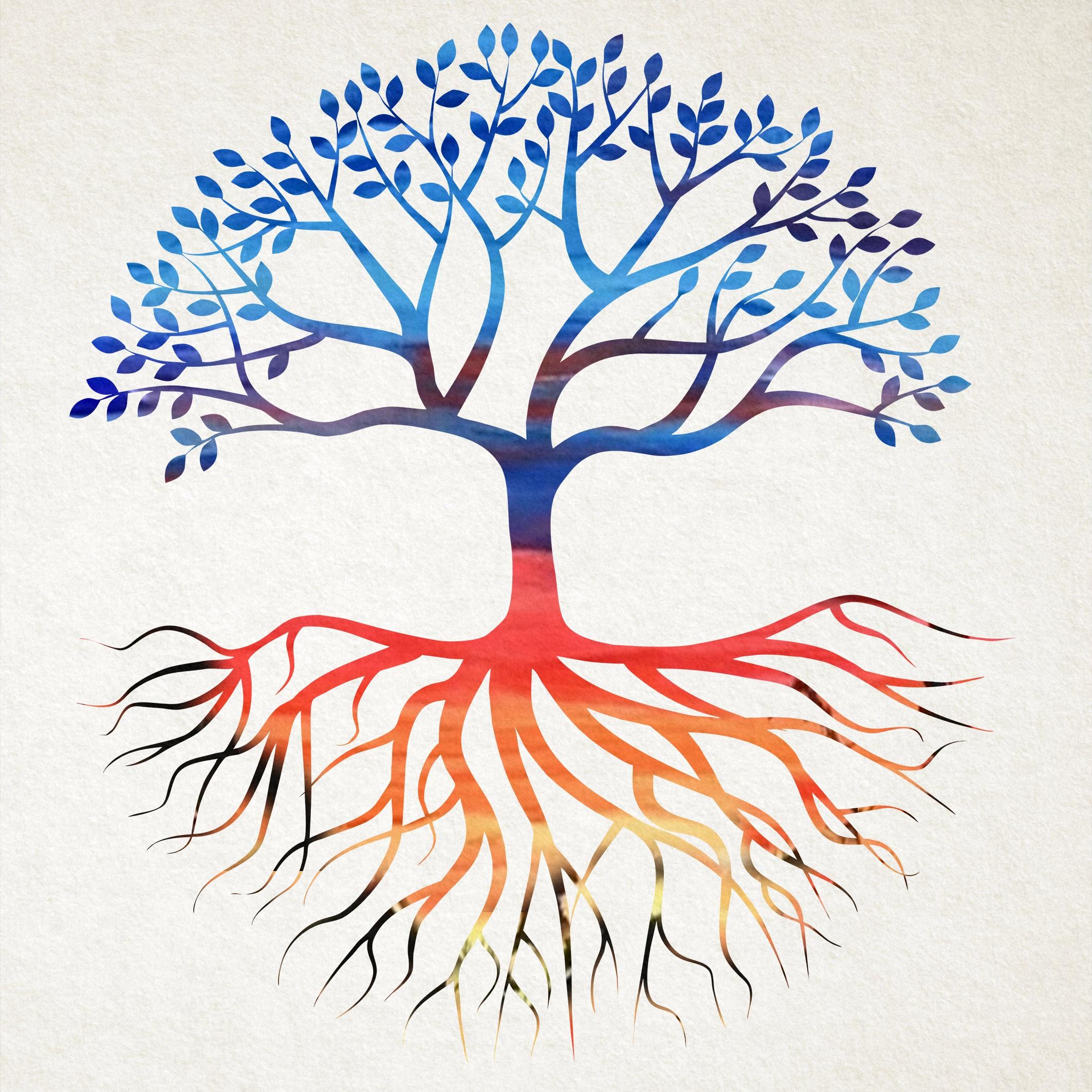 apod+tree.jpg