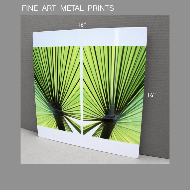 "fine art metal prints - - photo printed on aluminum sheet- brilliant glossy finish- 16"" x 16""- images full bleed to edge- float mount frame adhered to back included-ready to mountother sizes available"