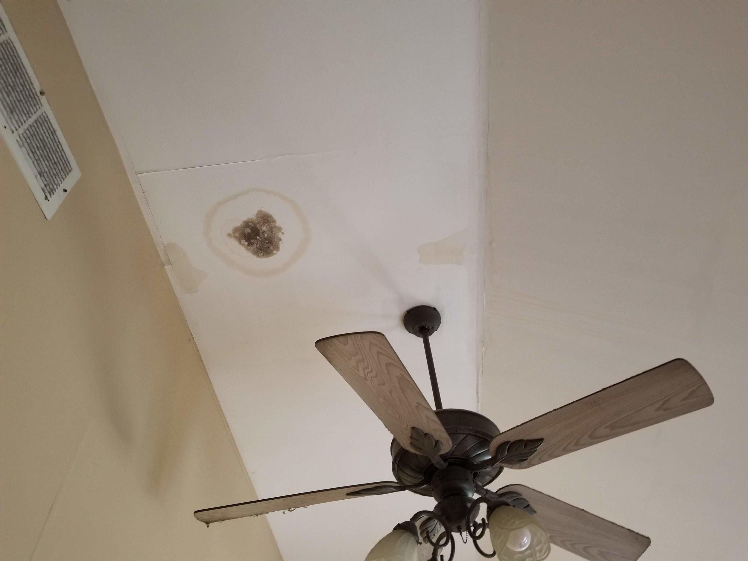 Drywall Repaired, unpainted